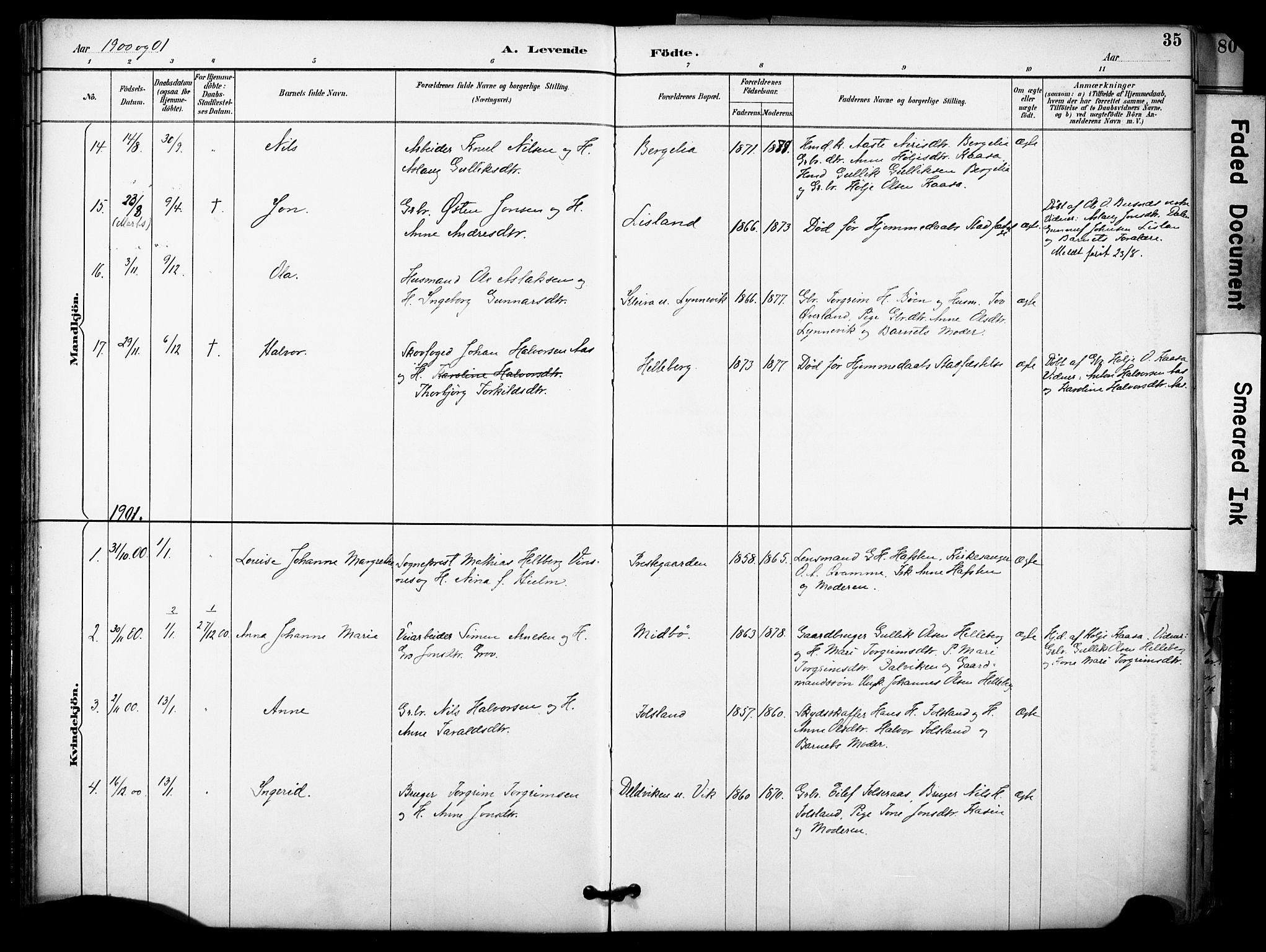 SAKO, Gransherad kirkebøker, F/Fa/L0005: Ministerialbok nr. I 5, 1887-1916, s. 35