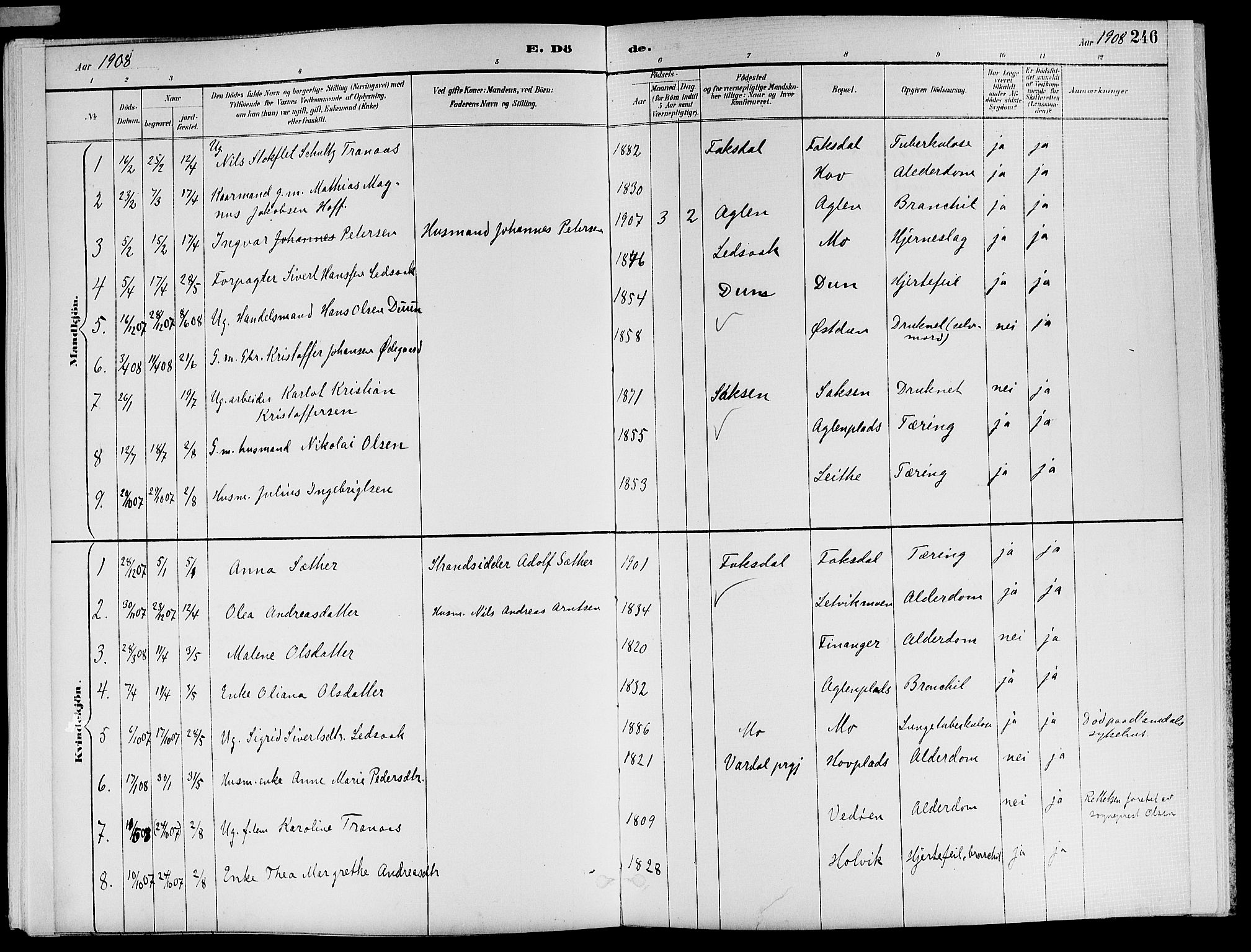 SAT, Ministerialprotokoller, klokkerbøker og fødselsregistre - Nord-Trøndelag, 773/L0617: Ministerialbok nr. 773A08, 1887-1910, s. 246
