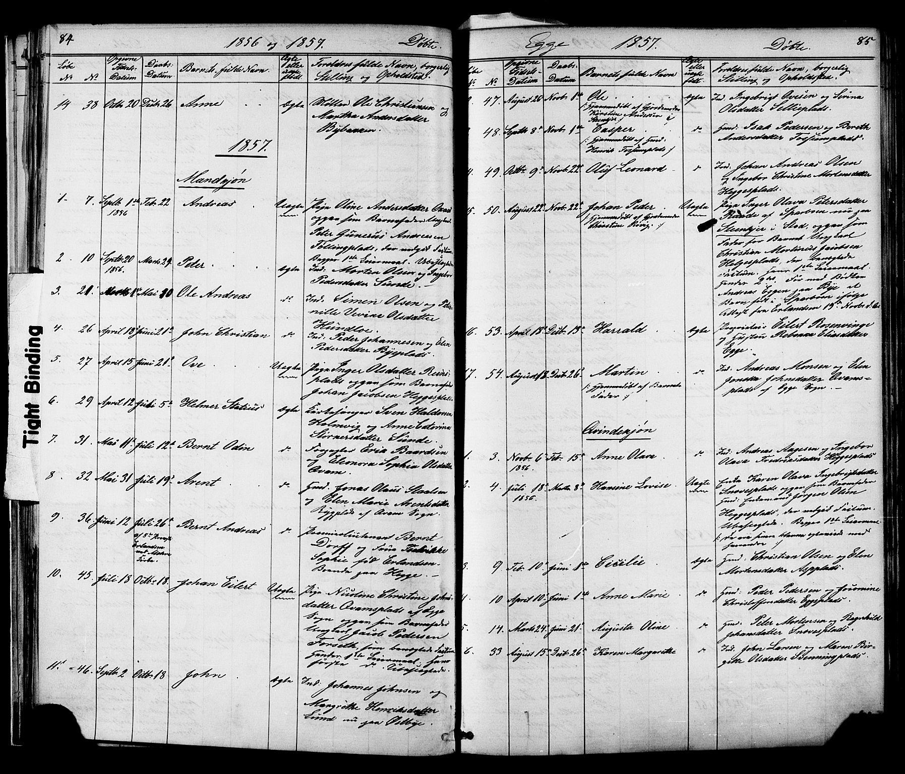 SAT, Ministerialprotokoller, klokkerbøker og fødselsregistre - Nord-Trøndelag, 739/L0367: Ministerialbok nr. 739A01 /3, 1838-1868, s. 84-85