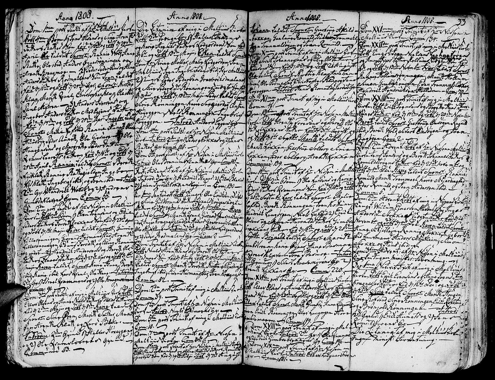 SAT, Ministerialprotokoller, klokkerbøker og fødselsregistre - Sør-Trøndelag, 691/L1061: Ministerialbok nr. 691A02 /1, 1768-1815, s. 33