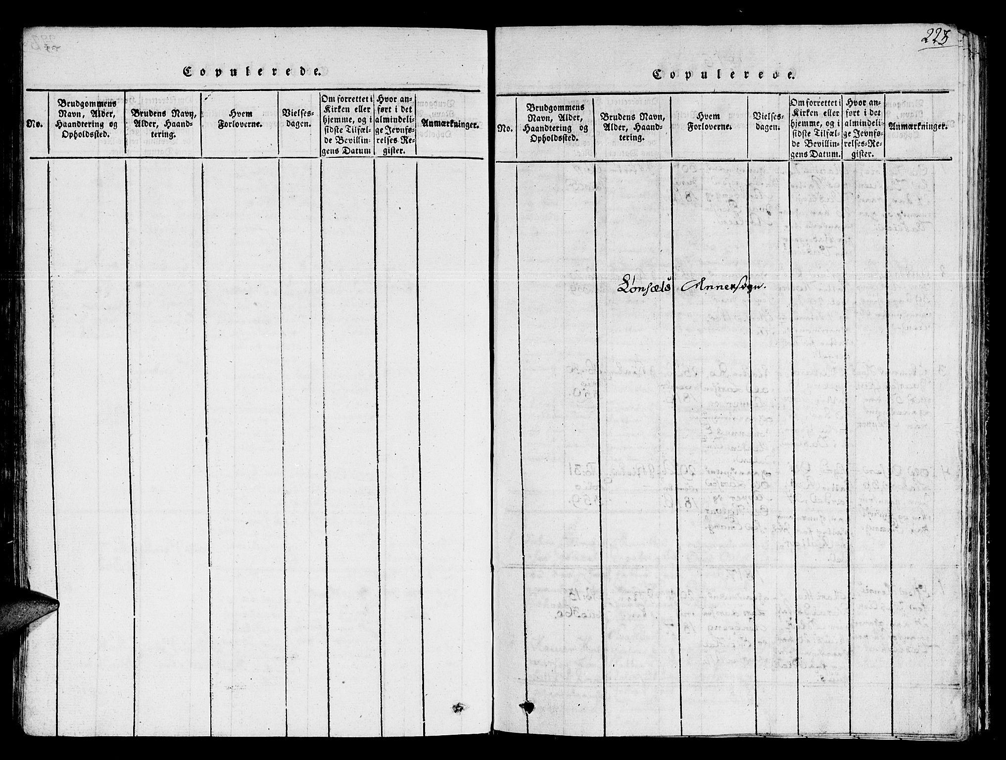 SAT, Ministerialprotokoller, klokkerbøker og fødselsregistre - Sør-Trøndelag, 678/L0896: Ministerialbok nr. 678A05 /2, 1816-1821, s. 223