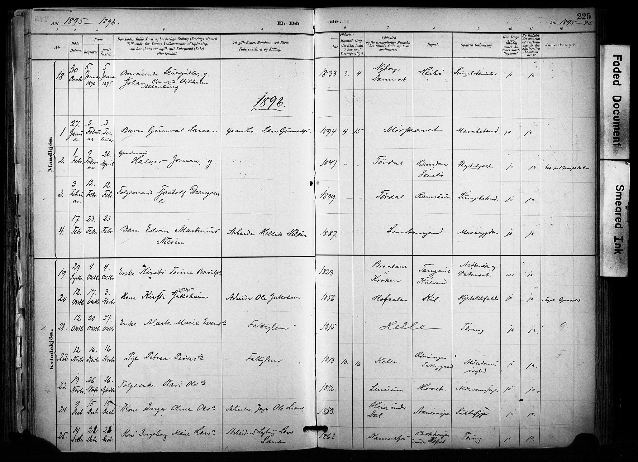 SAKO, Sannidal kirkebøker, F/Fa/L0015: Ministerialbok nr. 15, 1884-1899, s. 225
