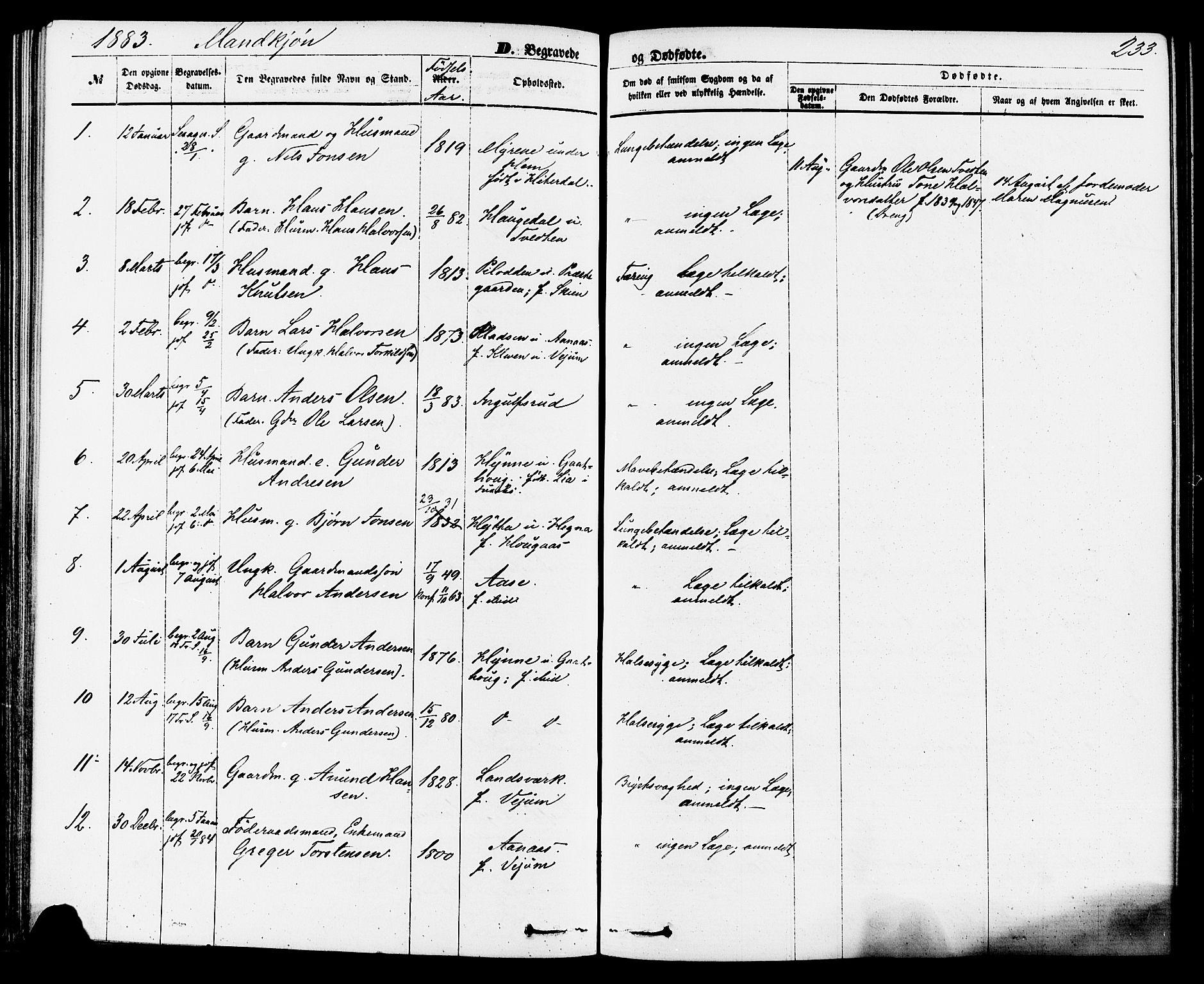 SAKO, Sauherad kirkebøker, F/Fa/L0008: Ministerialbok nr. I 8, 1873-1886, s. 233