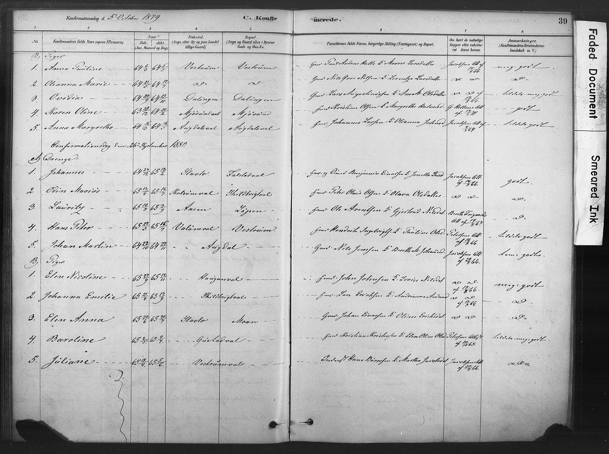 SAT, Ministerialprotokoller, klokkerbøker og fødselsregistre - Nord-Trøndelag, 719/L0178: Ministerialbok nr. 719A01, 1878-1900, s. 39
