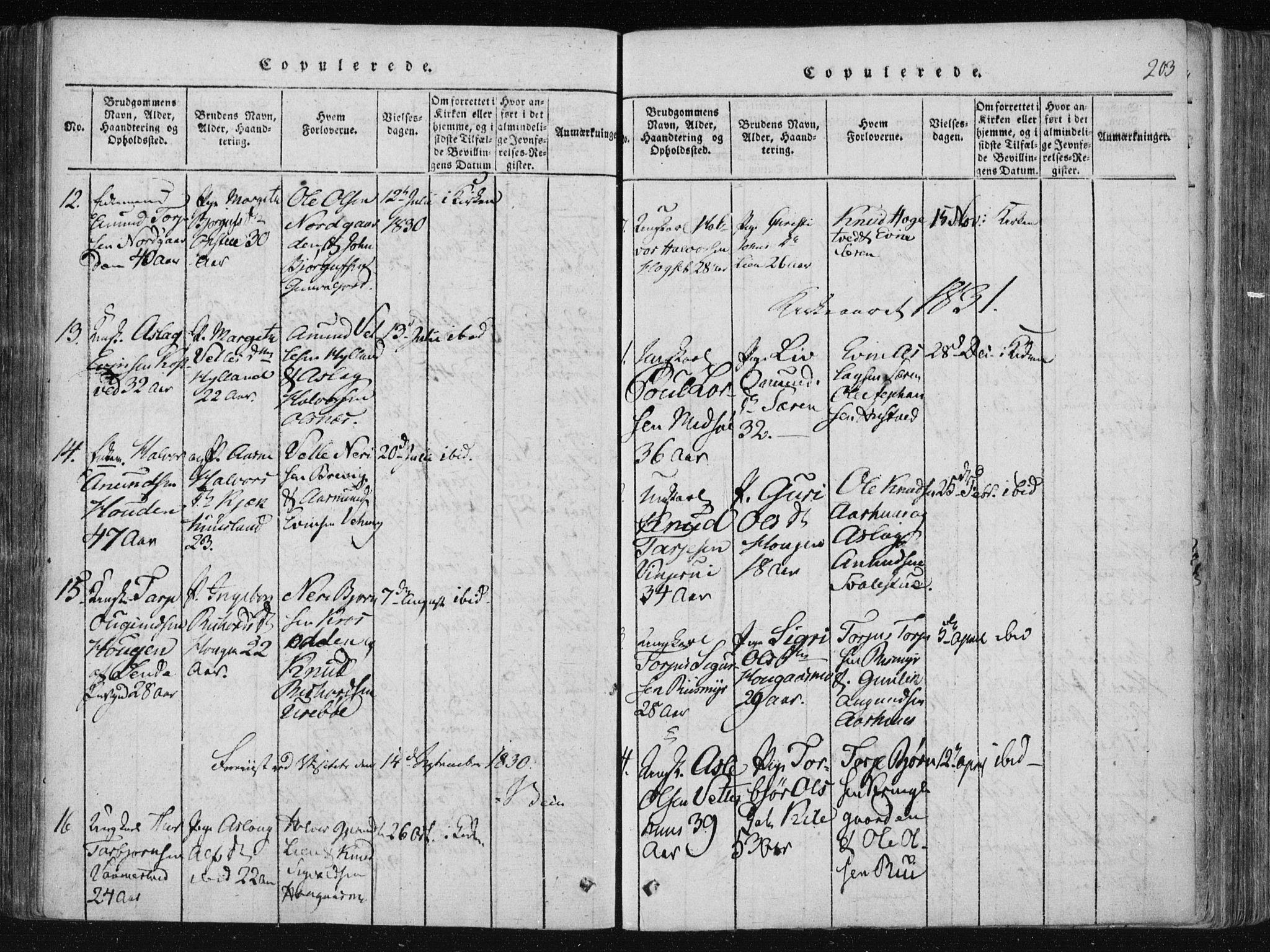 SAKO, Vinje kirkebøker, F/Fa/L0003: Ministerialbok nr. I 3, 1814-1843, s. 203