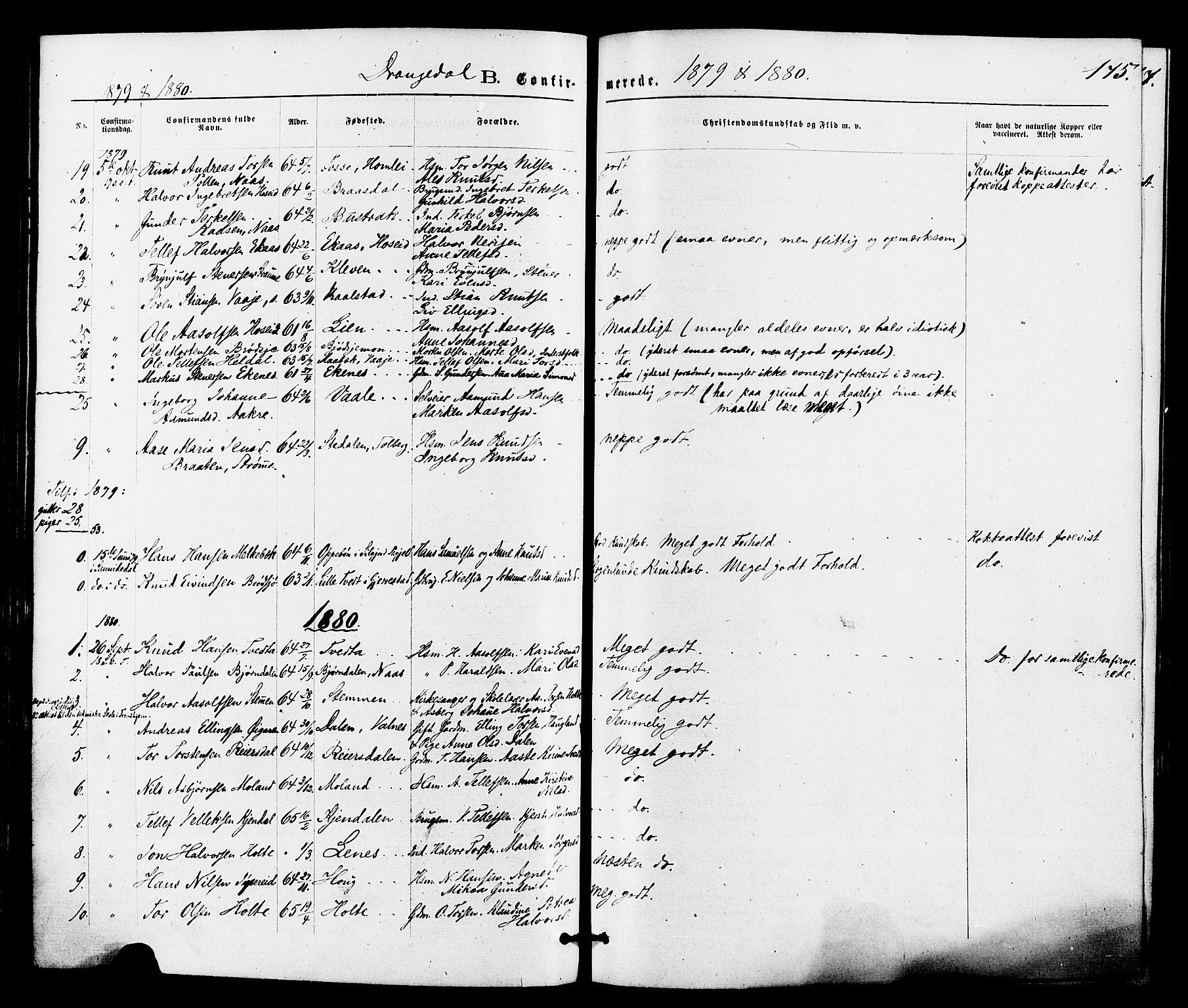 SAKO, Drangedal kirkebøker, F/Fa/L0009: Ministerialbok nr. 9 /1, 1872-1884, s. 175