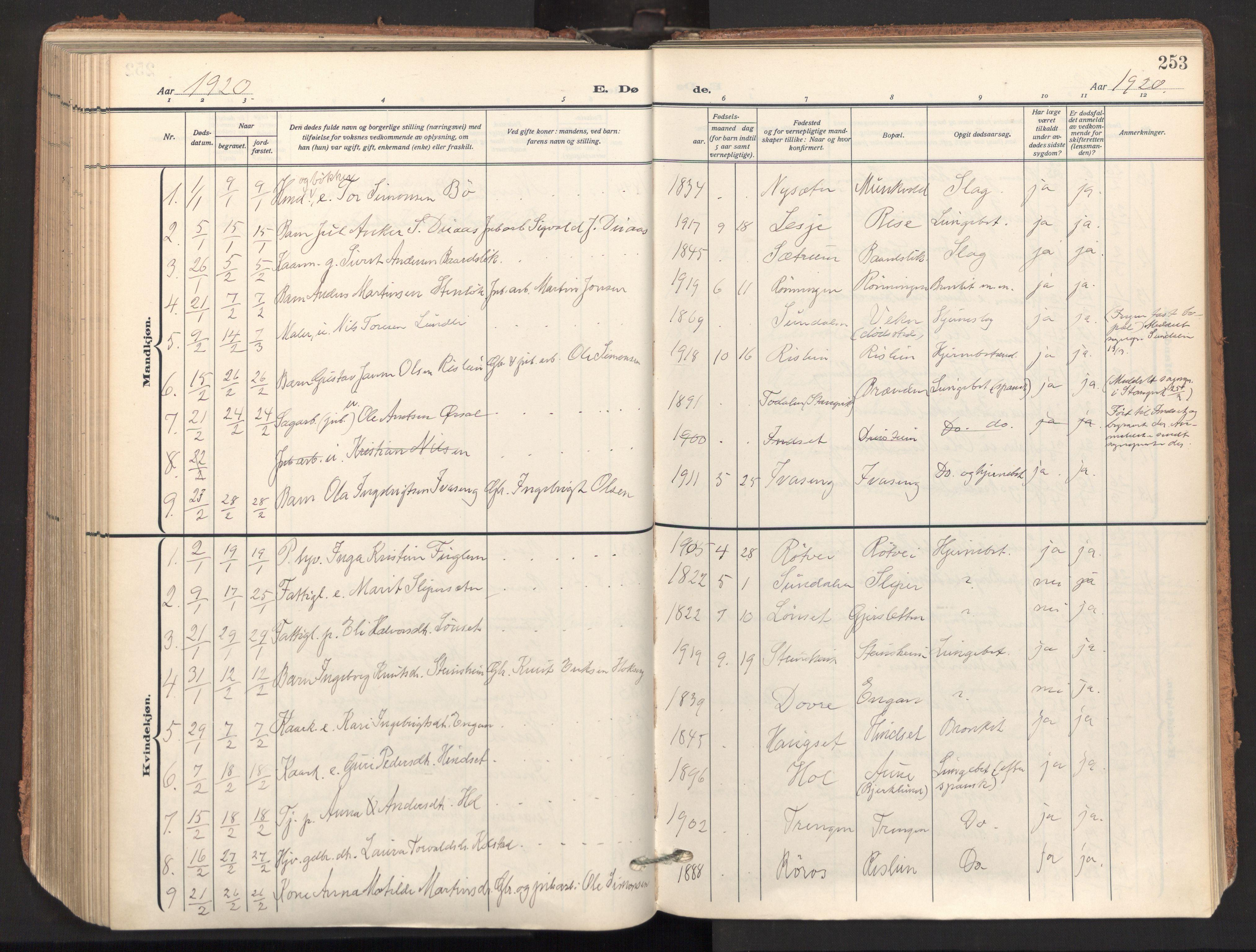 SAT, Ministerialprotokoller, klokkerbøker og fødselsregistre - Sør-Trøndelag, 678/L0909: Ministerialbok nr. 678A17, 1912-1930, s. 253