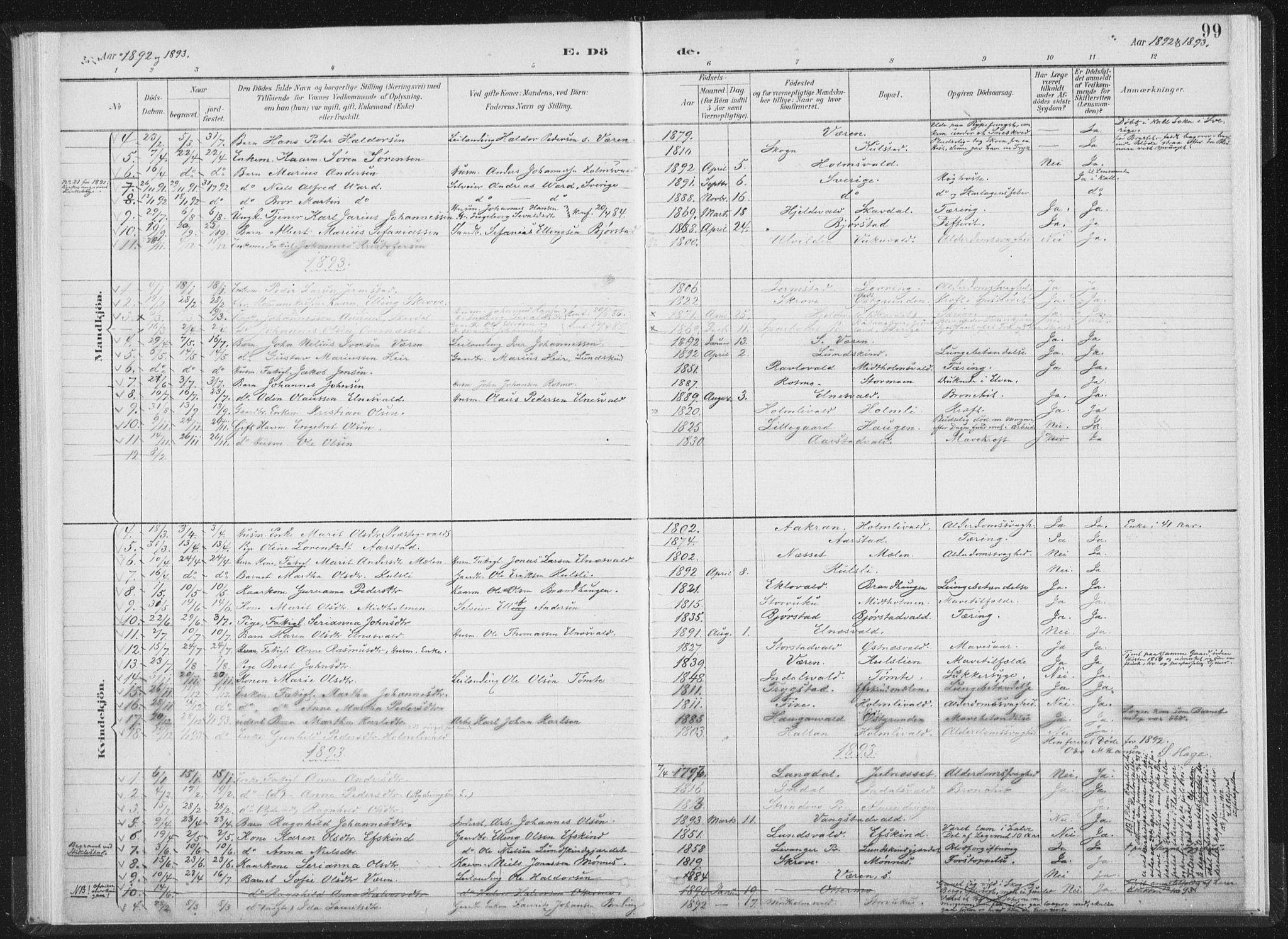 SAT, Ministerialprotokoller, klokkerbøker og fødselsregistre - Nord-Trøndelag, 724/L0263: Ministerialbok nr. 724A01, 1891-1907, s. 99
