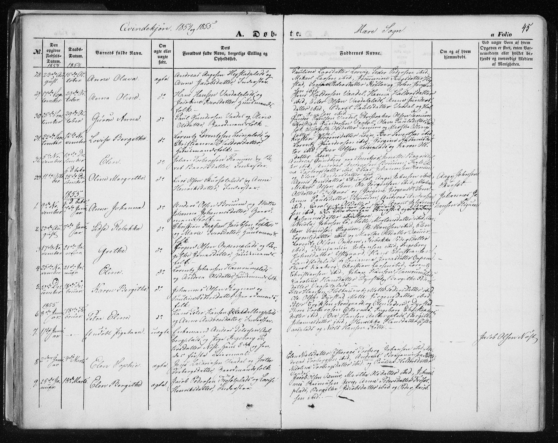 SAT, Ministerialprotokoller, klokkerbøker og fødselsregistre - Nord-Trøndelag, 735/L0342: Ministerialbok nr. 735A07 /1, 1849-1862, s. 45