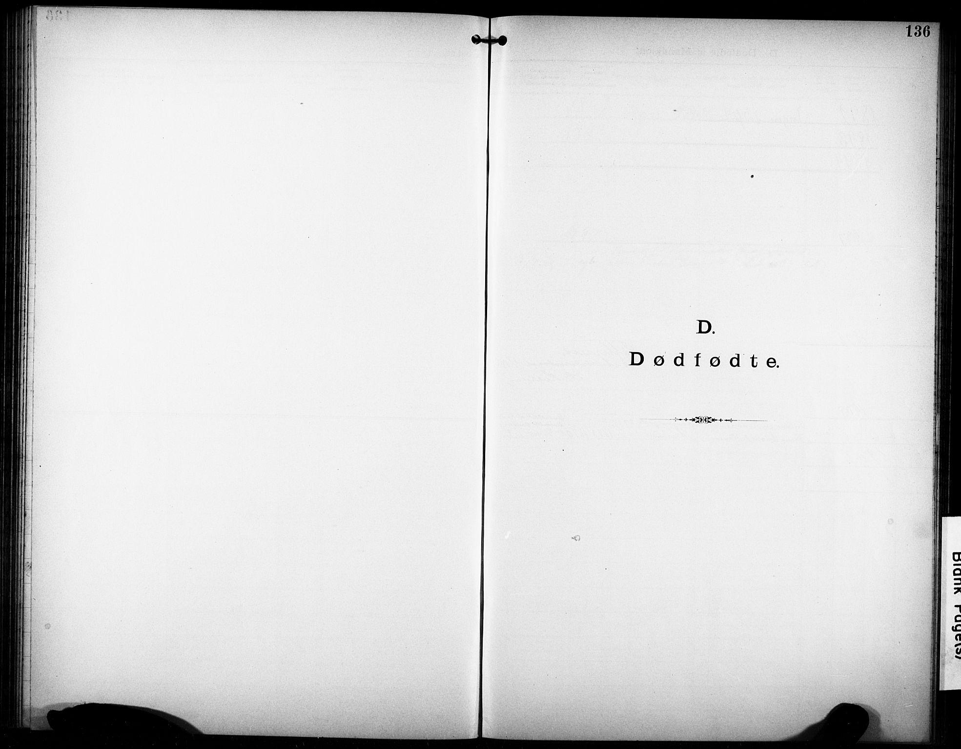 SAKO, Den katolsk-apostoliske menighet i Larvik, F/Fa/L0001: Dissenterprotokoll nr. 1, 1892-1933, s. 136