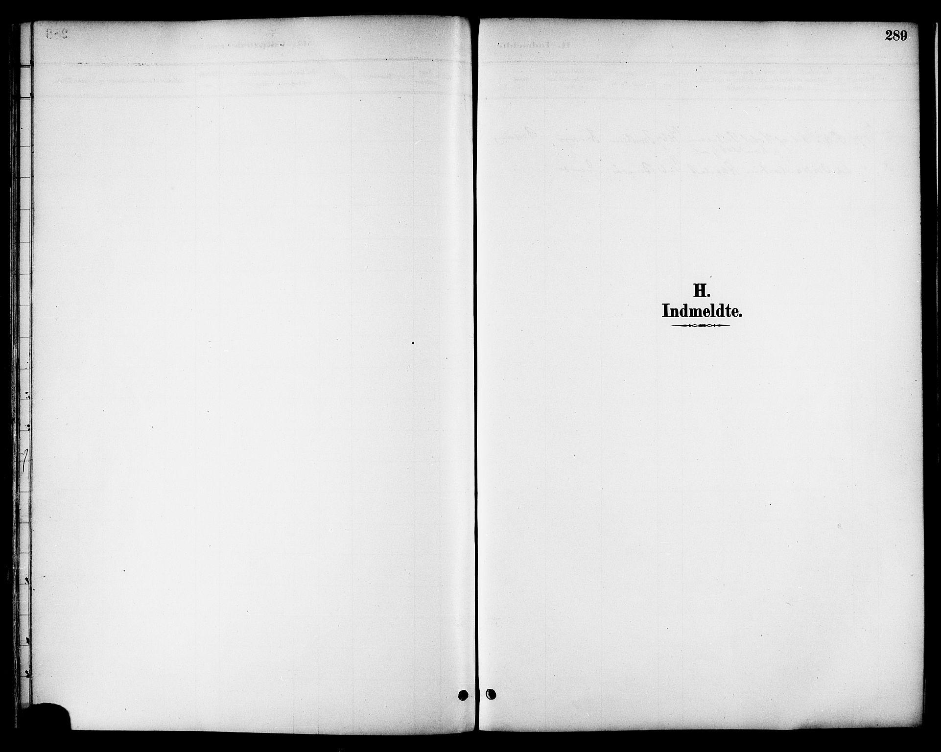 SAT, Ministerialprotokoller, klokkerbøker og fødselsregistre - Nordland, 863/L0898: Ministerialbok nr. 863A10, 1886-1897, s. 289