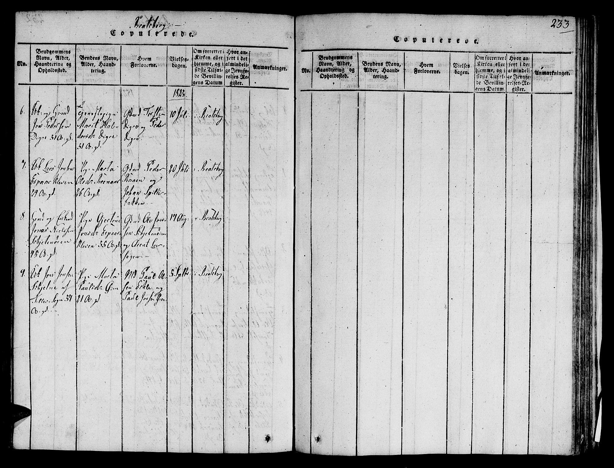 SAT, Ministerialprotokoller, klokkerbøker og fødselsregistre - Sør-Trøndelag, 606/L0285: Ministerialbok nr. 606A03 /3, 1819-1823, s. 233