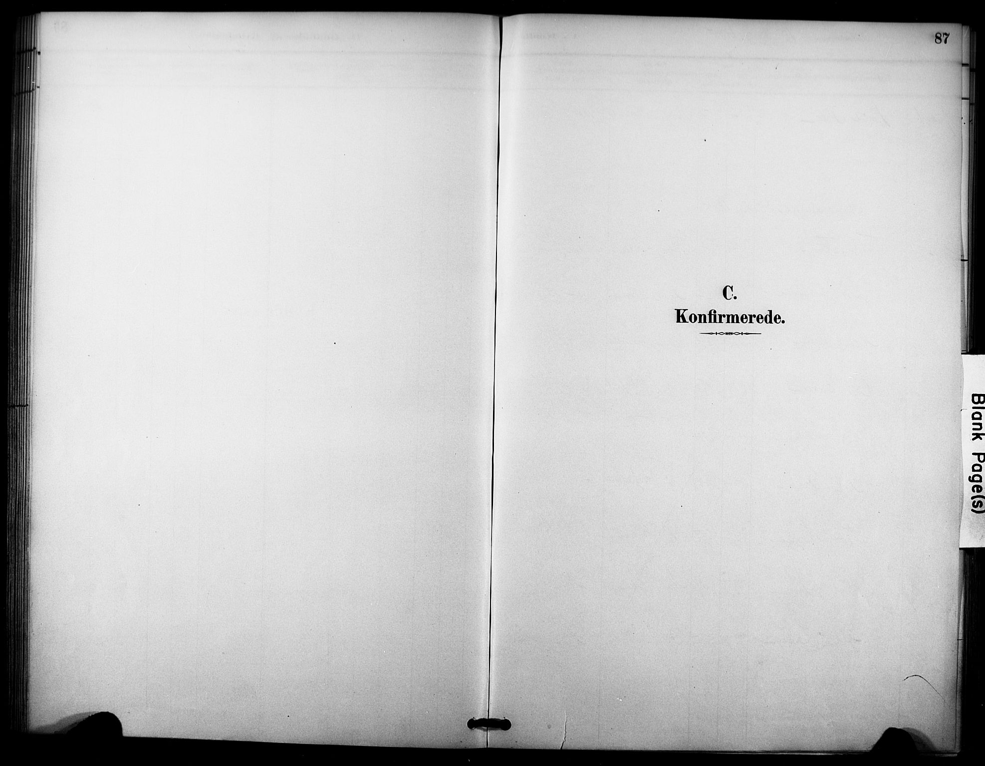 SAKO, Nore kirkebøker, F/Fc/L0004: Ministerialbok nr. III 4, 1885-1898, s. 87