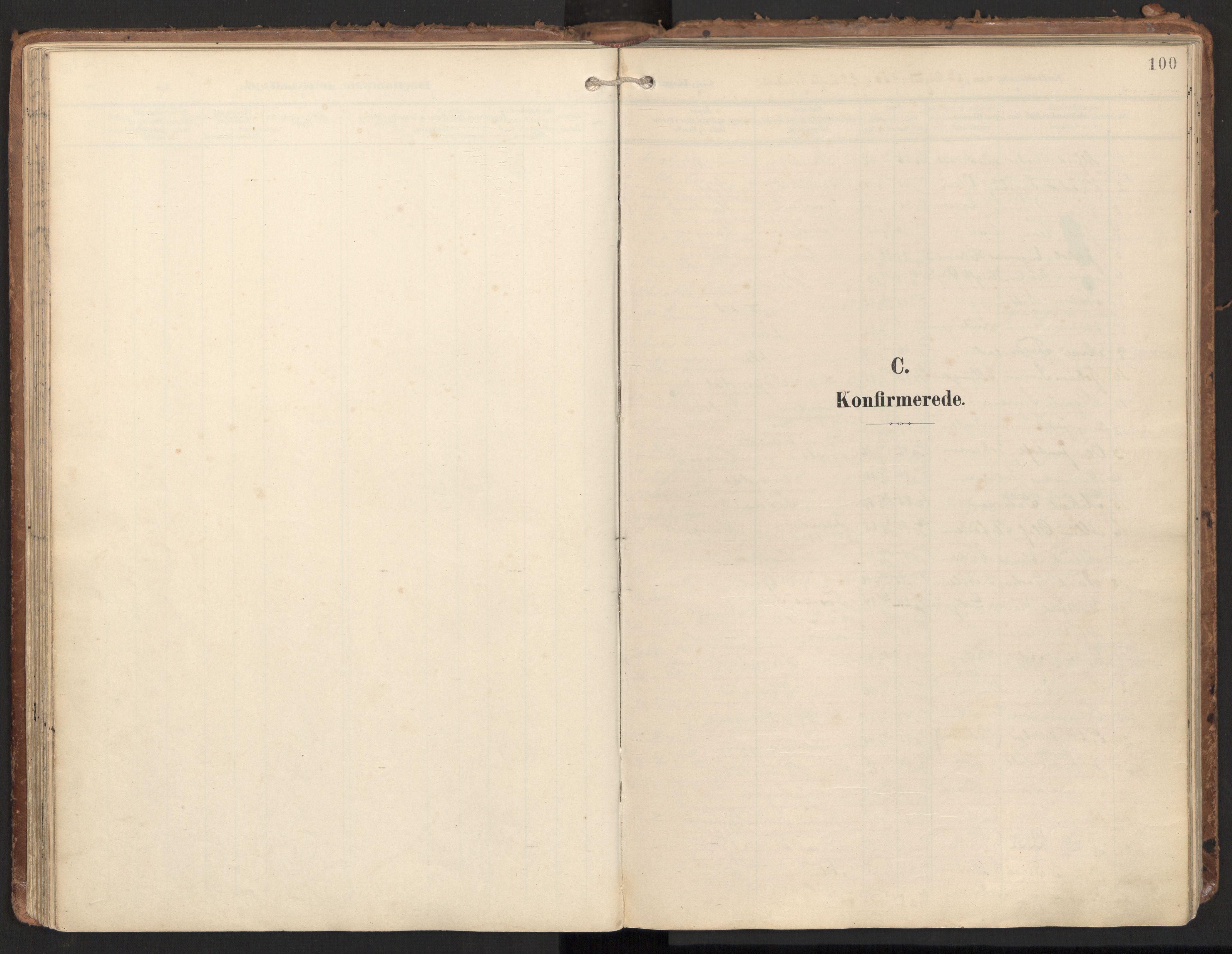SAT, Ministerialprotokoller, klokkerbøker og fødselsregistre - Nord-Trøndelag, 784/L0677: Ministerialbok nr. 784A12, 1900-1920, s. 100