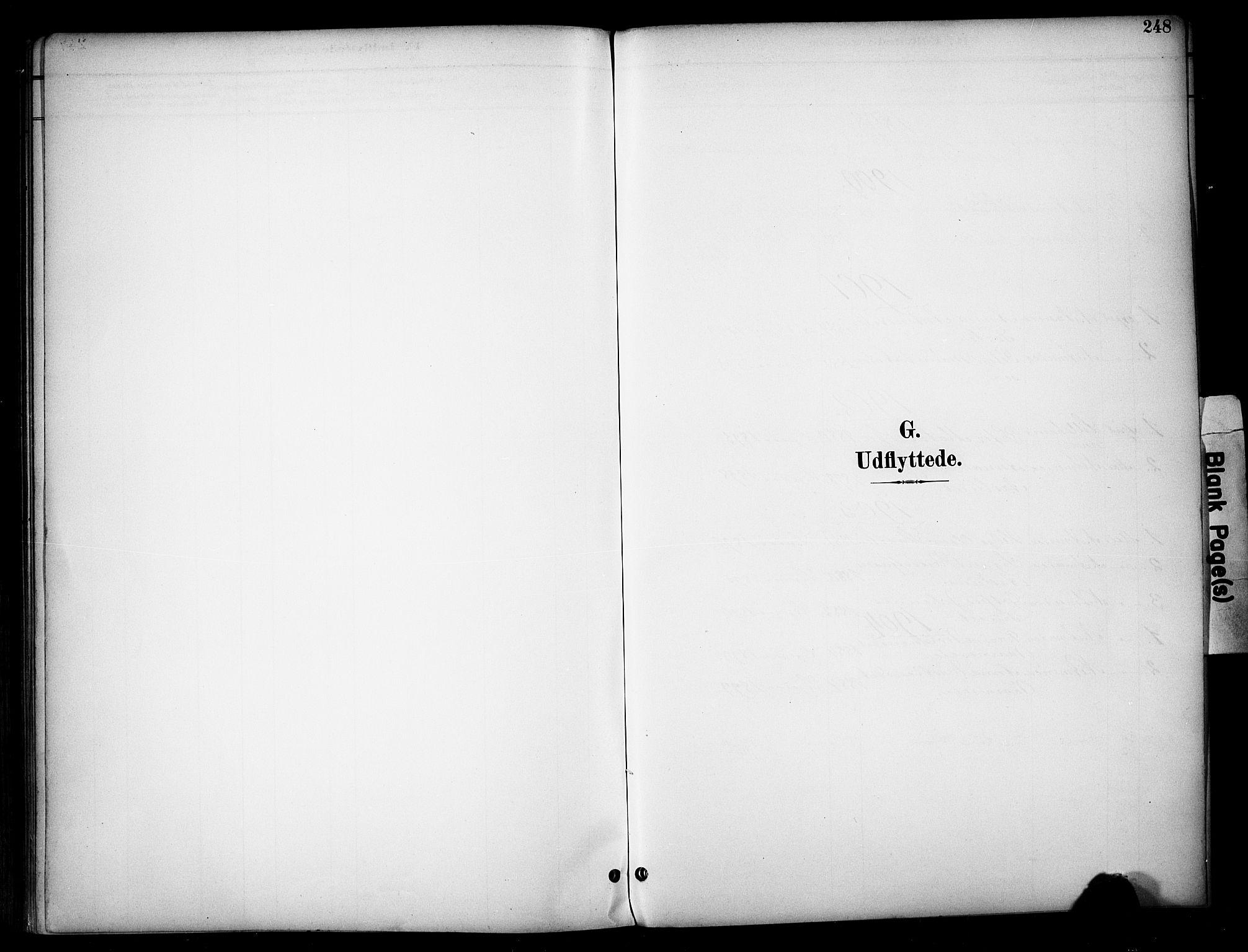 SAH, Vardal prestekontor, H/Ha/Haa/L0012: Ministerialbok nr. 12, 1893-1904, s. 248