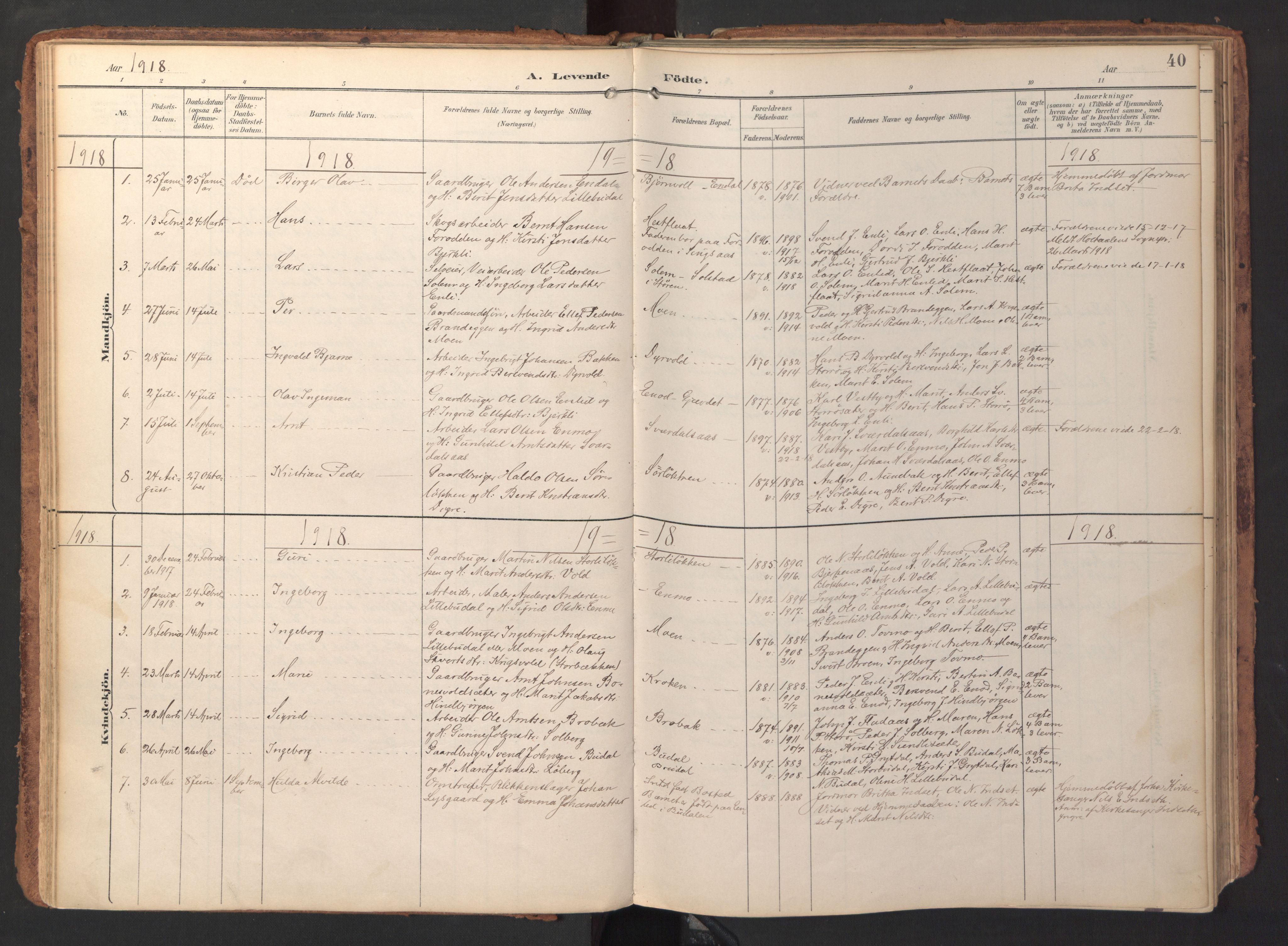 SAT, Ministerialprotokoller, klokkerbøker og fødselsregistre - Sør-Trøndelag, 690/L1050: Ministerialbok nr. 690A01, 1889-1929, s. 40
