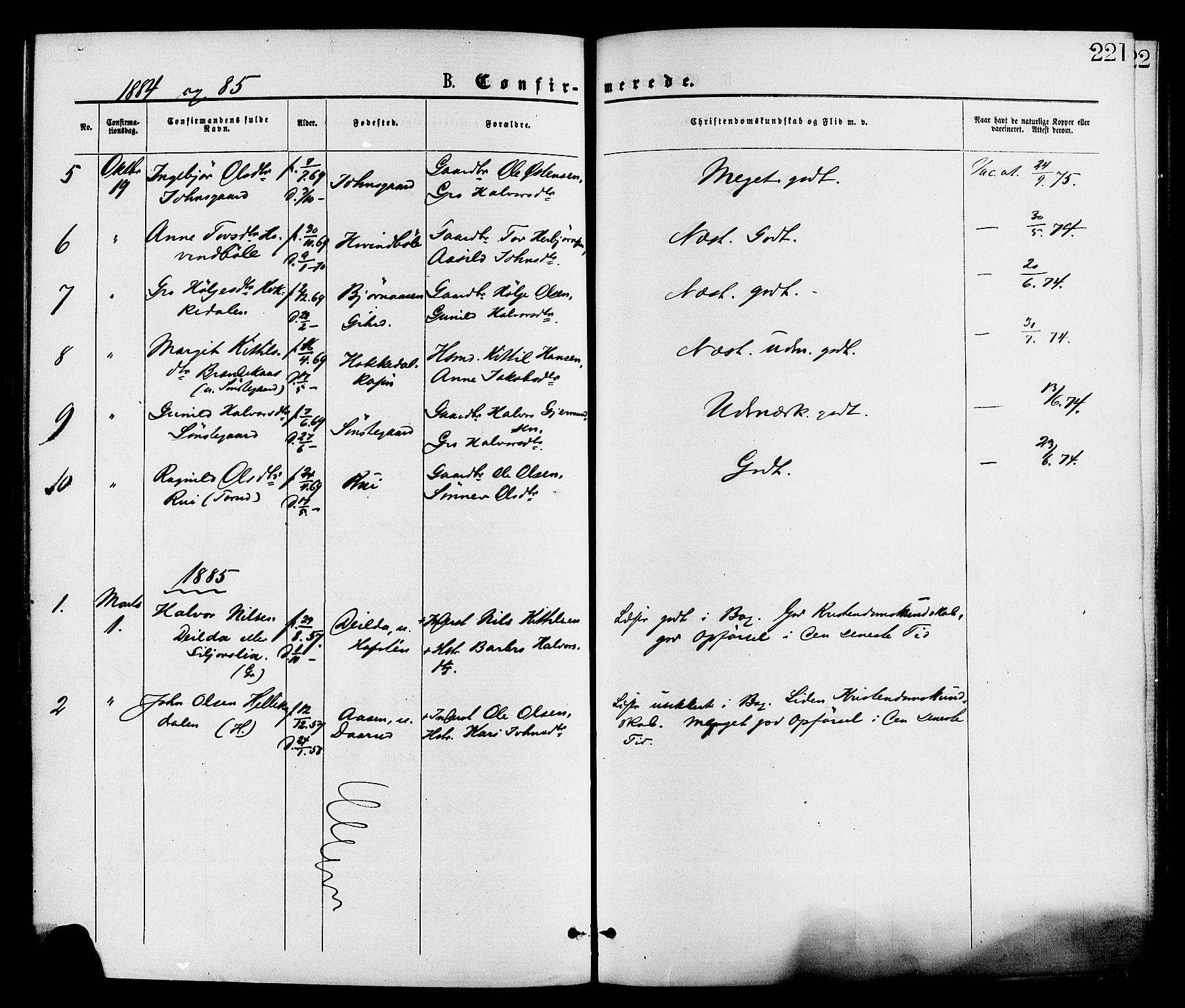 SAKO, Gransherad kirkebøker, F/Fa/L0004: Ministerialbok nr. I 4, 1871-1886, s. 221