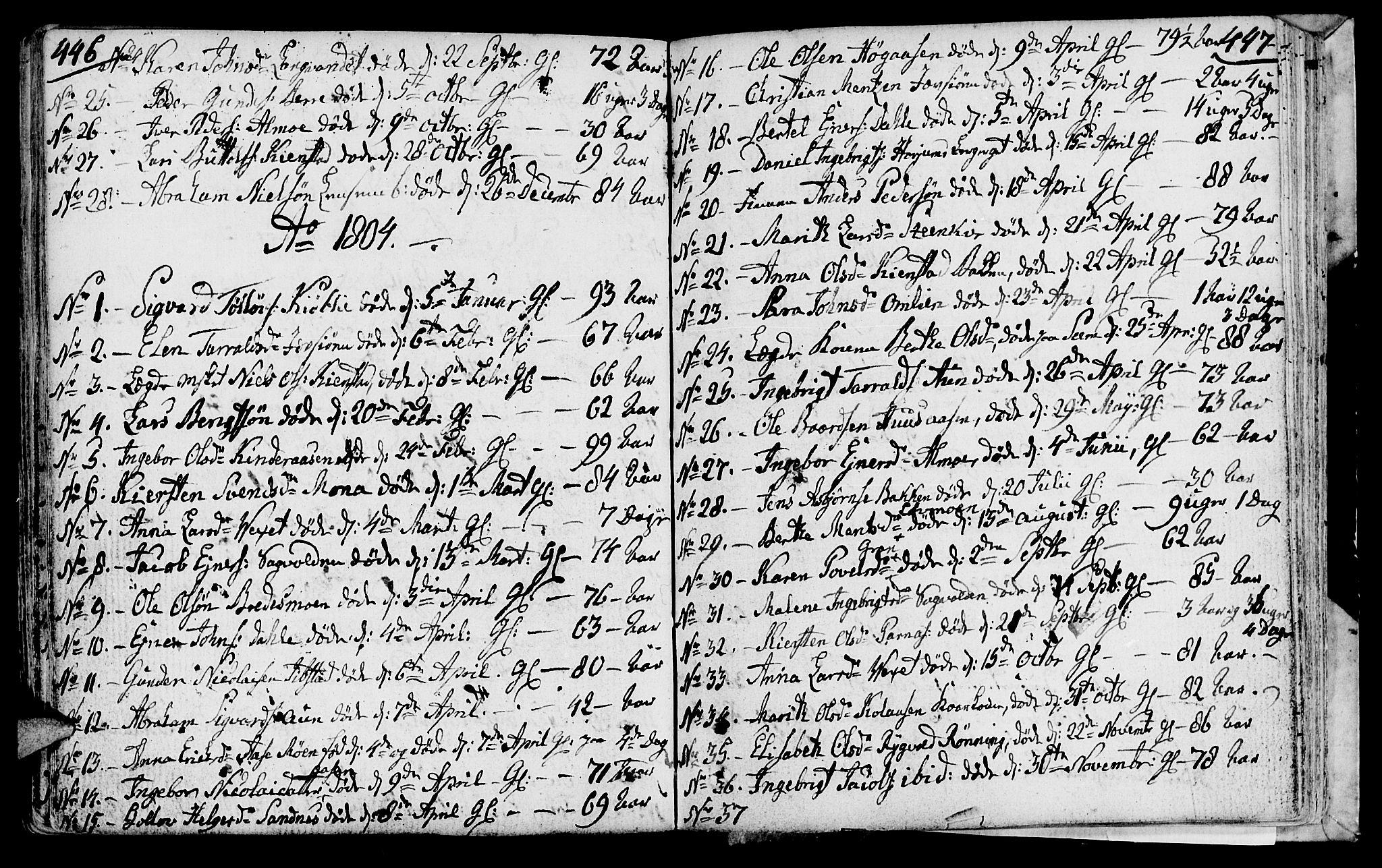 SAT, Ministerialprotokoller, klokkerbøker og fødselsregistre - Nord-Trøndelag, 749/L0468: Ministerialbok nr. 749A02, 1787-1817, s. 446-447
