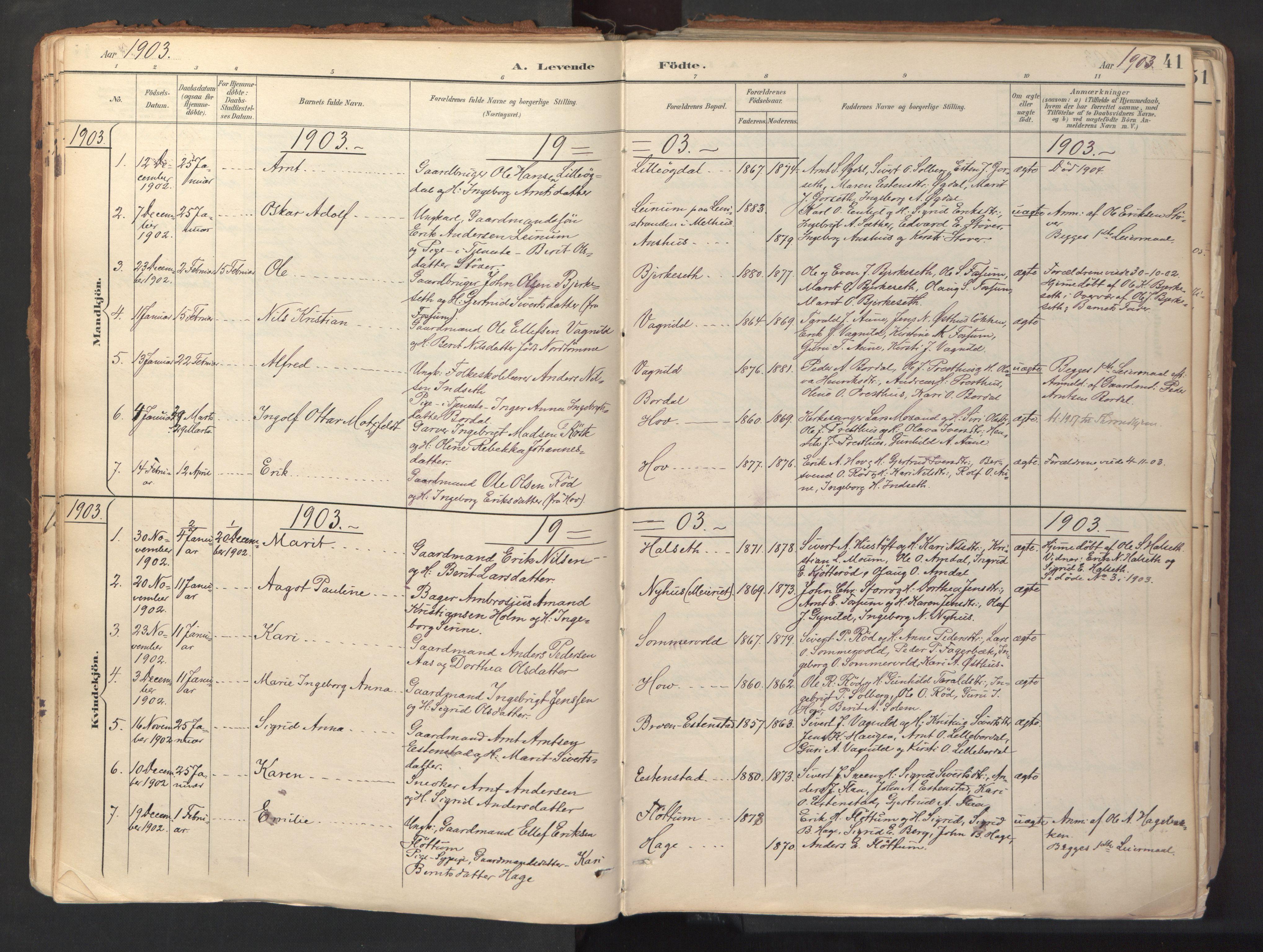 SAT, Ministerialprotokoller, klokkerbøker og fødselsregistre - Sør-Trøndelag, 689/L1041: Ministerialbok nr. 689A06, 1891-1923, s. 41