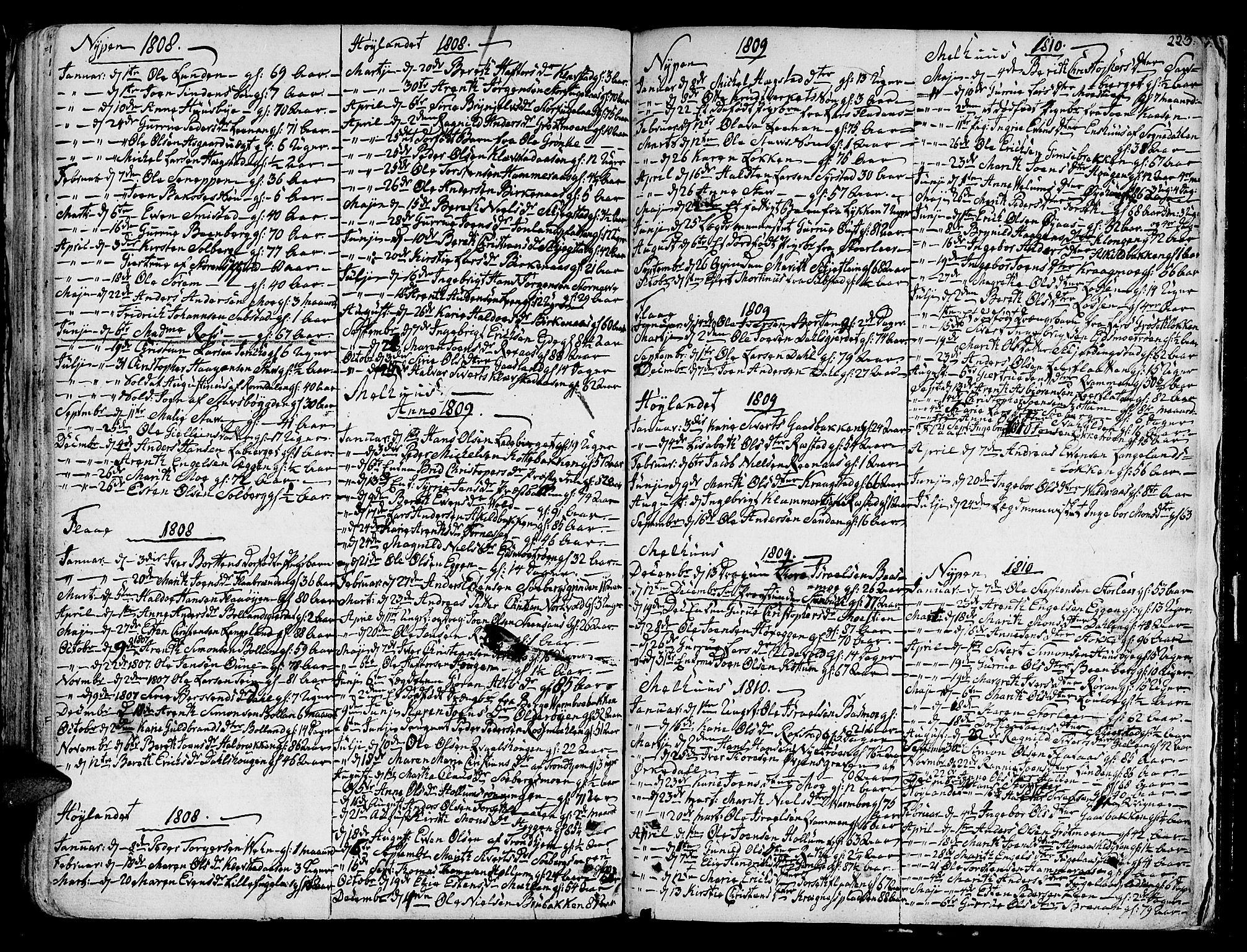 SAT, Ministerialprotokoller, klokkerbøker og fødselsregistre - Sør-Trøndelag, 691/L1061: Ministerialbok nr. 691A02 /1, 1768-1815, s. 223