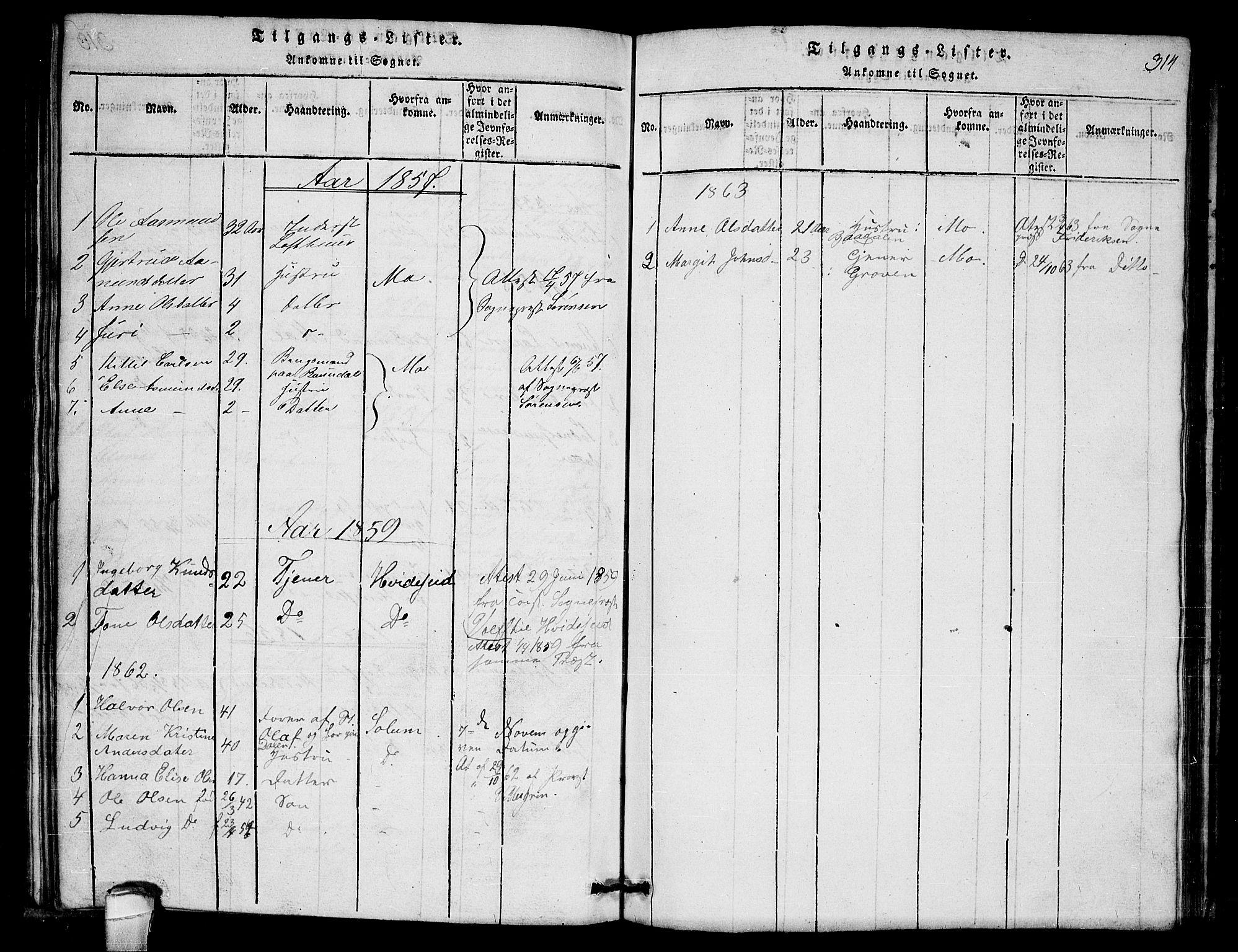 SAKO, Lårdal kirkebøker, G/Gb/L0001: Klokkerbok nr. II 1, 1815-1865, s. 314