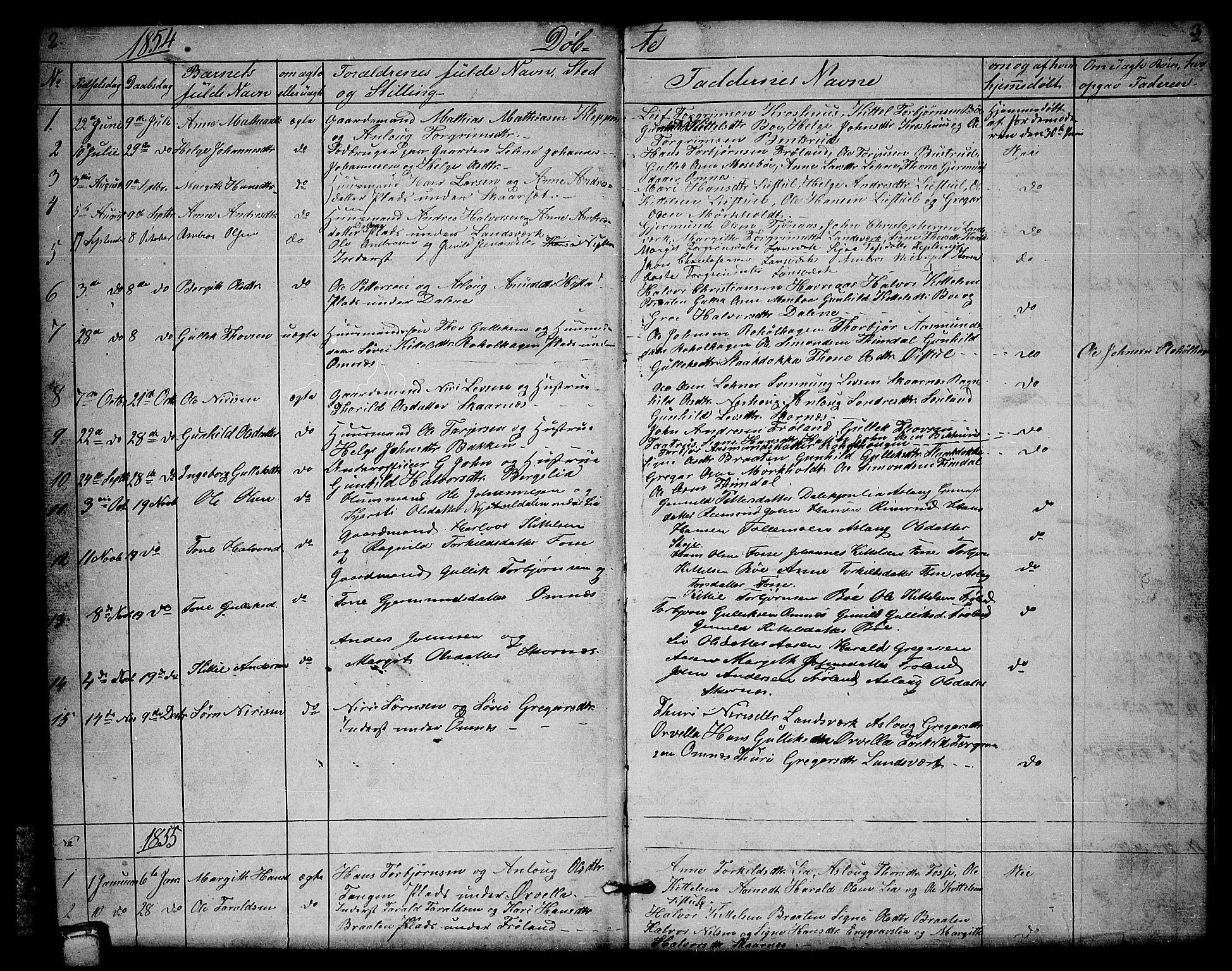 SAKO, Hjartdal kirkebøker, G/Gb/L0002: Klokkerbok nr. II 2, 1854-1884, s. 2-3