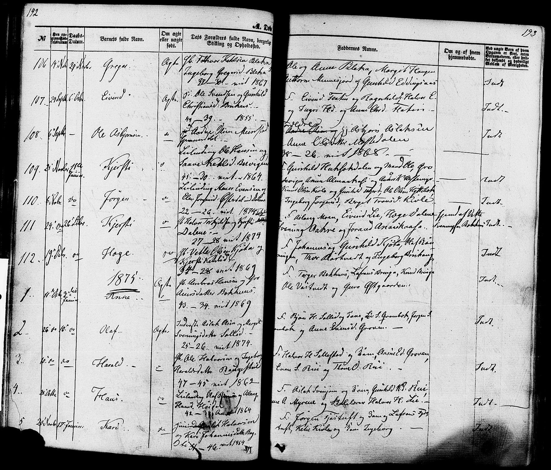 SAKO, Seljord kirkebøker, F/Fa/L0013: Ministerialbok nr. I 13, 1866-1876, s. 192-193