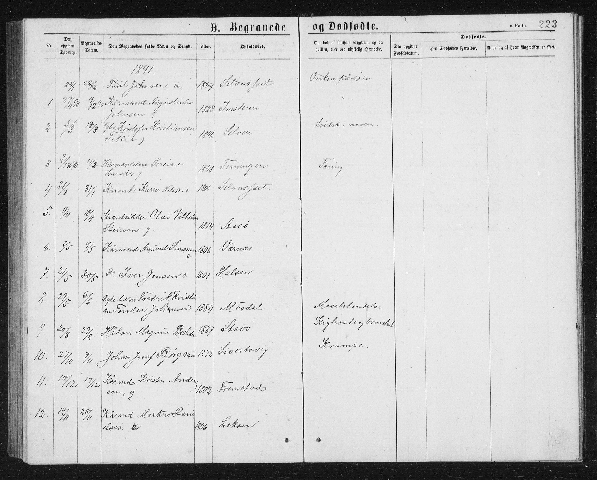 SAT, Ministerialprotokoller, klokkerbøker og fødselsregistre - Sør-Trøndelag, 662/L0756: Klokkerbok nr. 662C01, 1869-1891, s. 223