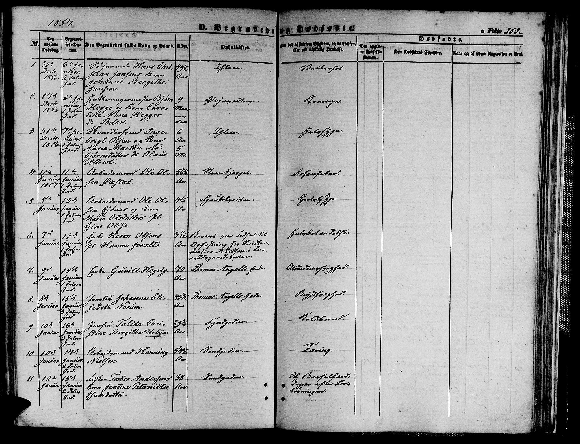 SAT, Ministerialprotokoller, klokkerbøker og fødselsregistre - Sør-Trøndelag, 602/L0138: Klokkerbok nr. 602C06, 1853-1858, s. 263