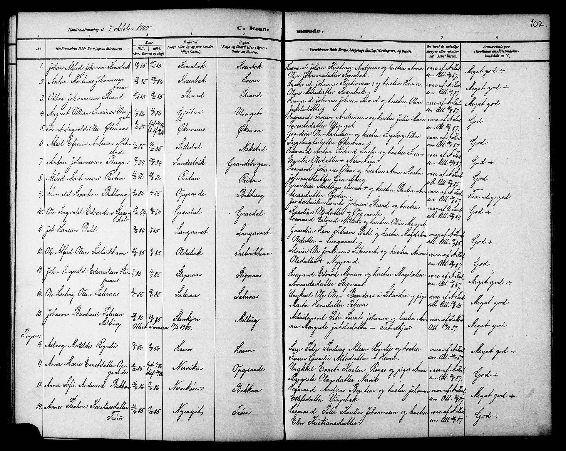SAT, Ministerialprotokoller, klokkerbøker og fødselsregistre - Nord-Trøndelag, 733/L0327: Klokkerbok nr. 733C02, 1888-1918, s. 102