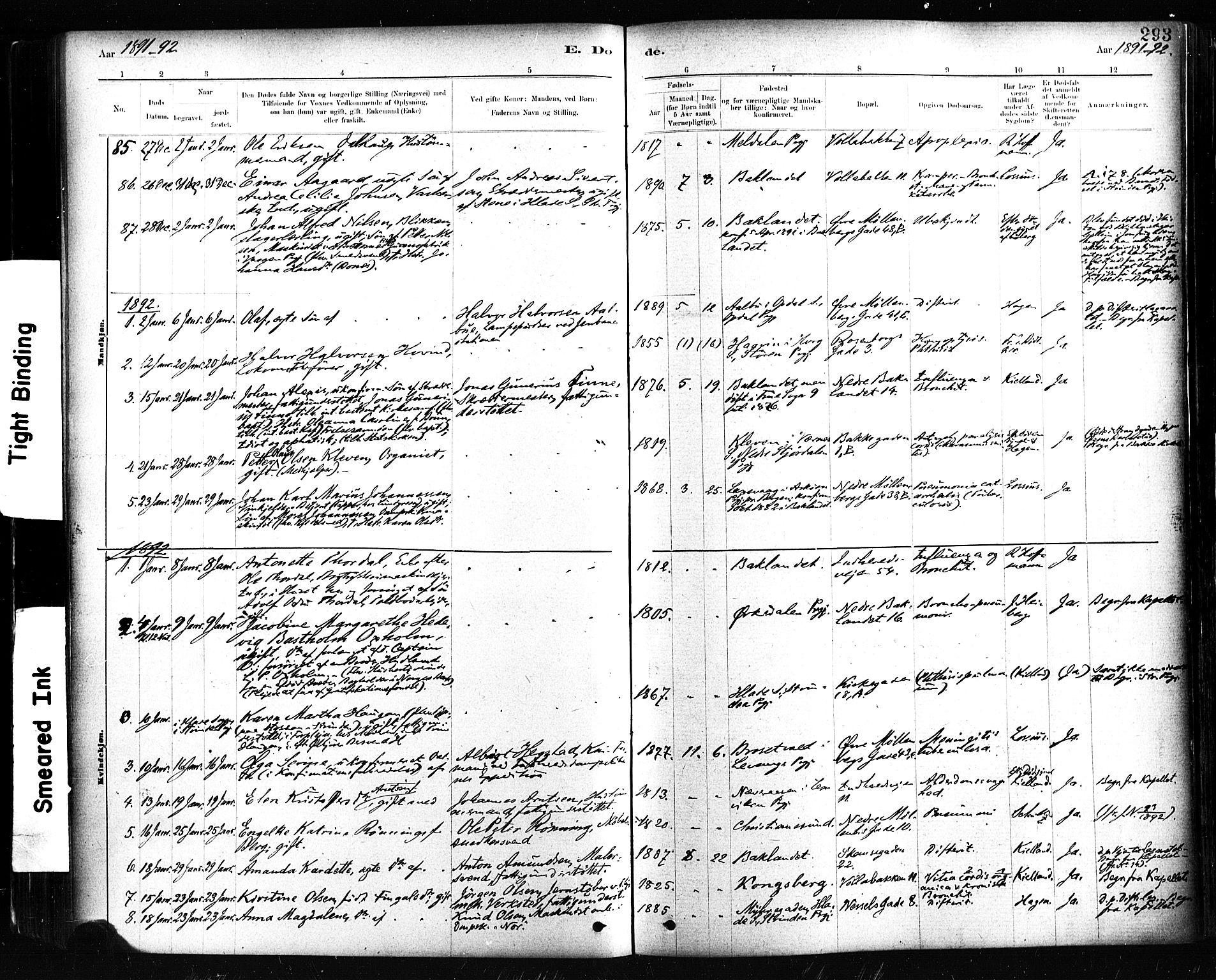 SAT, Ministerialprotokoller, klokkerbøker og fødselsregistre - Sør-Trøndelag, 604/L0189: Ministerialbok nr. 604A10, 1878-1892, s. 293