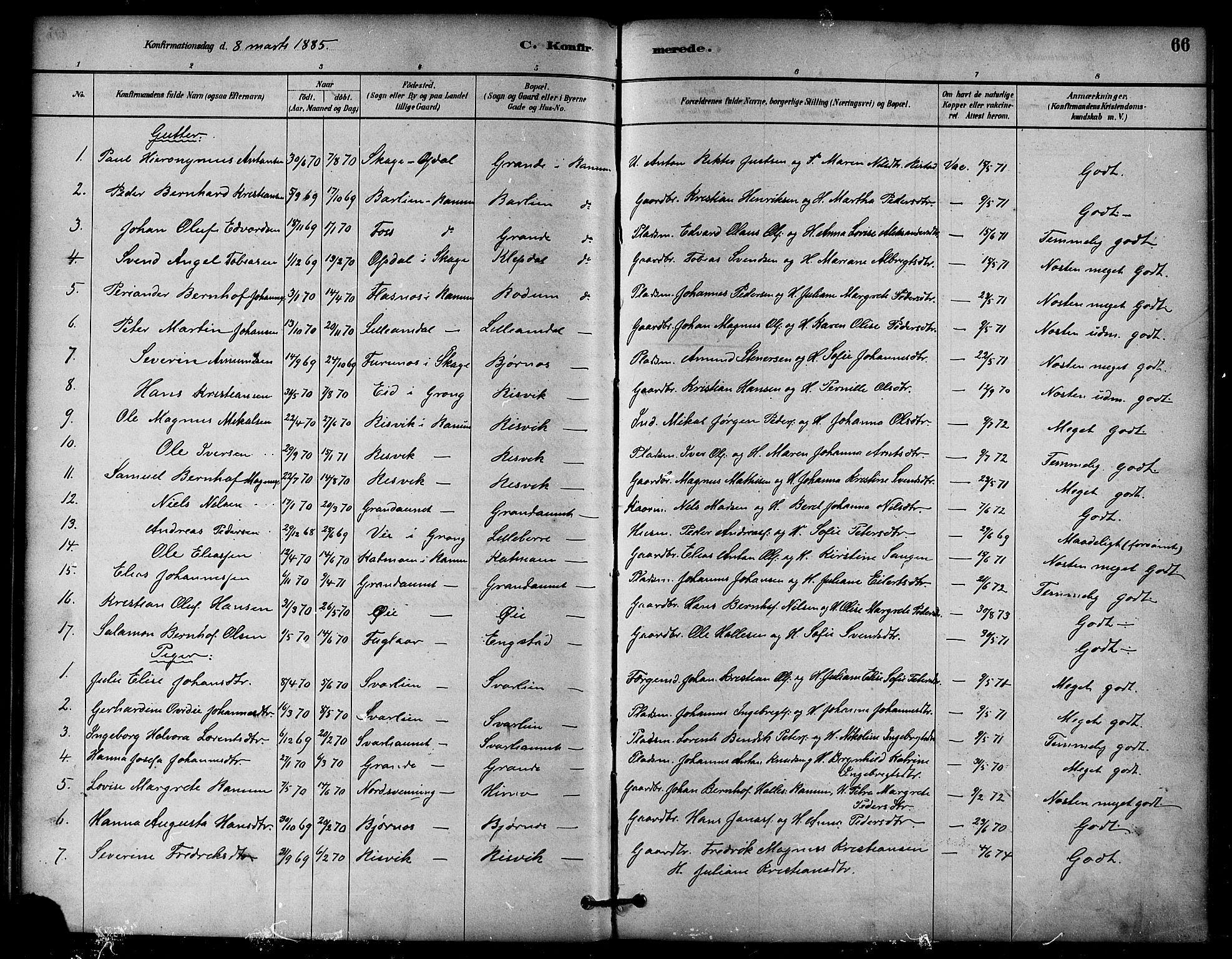 SAT, Ministerialprotokoller, klokkerbøker og fødselsregistre - Nord-Trøndelag, 764/L0555: Ministerialbok nr. 764A10, 1881-1896, s. 66