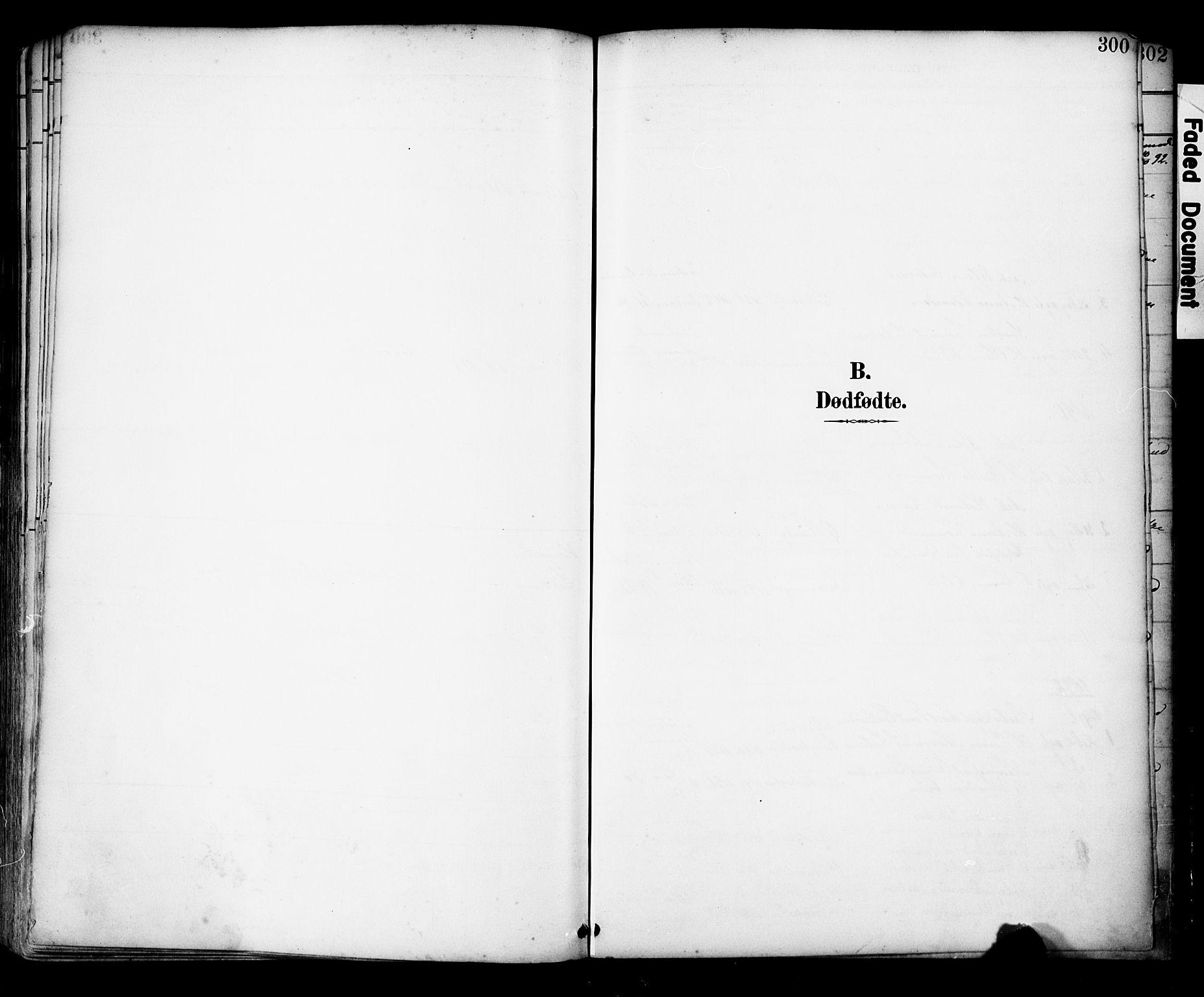 SAST, Domkirken sokneprestkontor, 30/30BA/L0030: Ministerialbok nr. A 29, 1889-1902, s. 300
