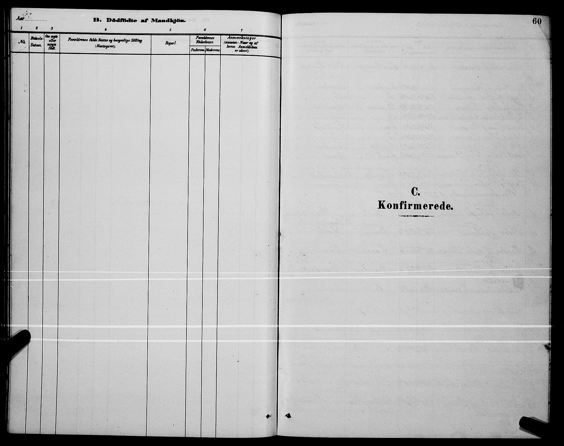 SAT, Ministerialprotokoller, klokkerbøker og fødselsregistre - Nordland, 803/L0076: Klokkerbok nr. 803C03, 1882-1897, s. 60