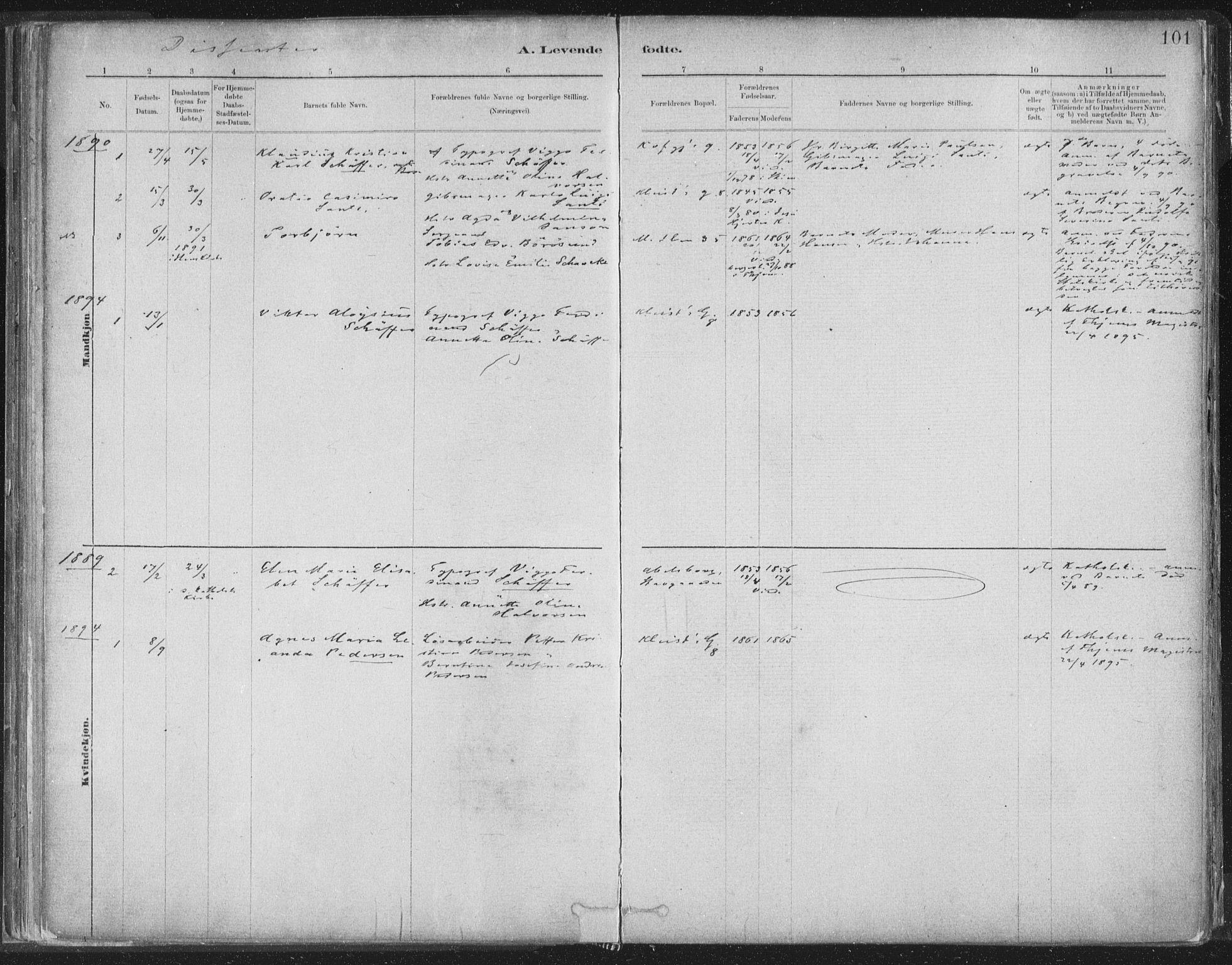 SAT, Ministerialprotokoller, klokkerbøker og fødselsregistre - Sør-Trøndelag, 603/L0162: Ministerialbok nr. 603A01, 1879-1895, s. 101