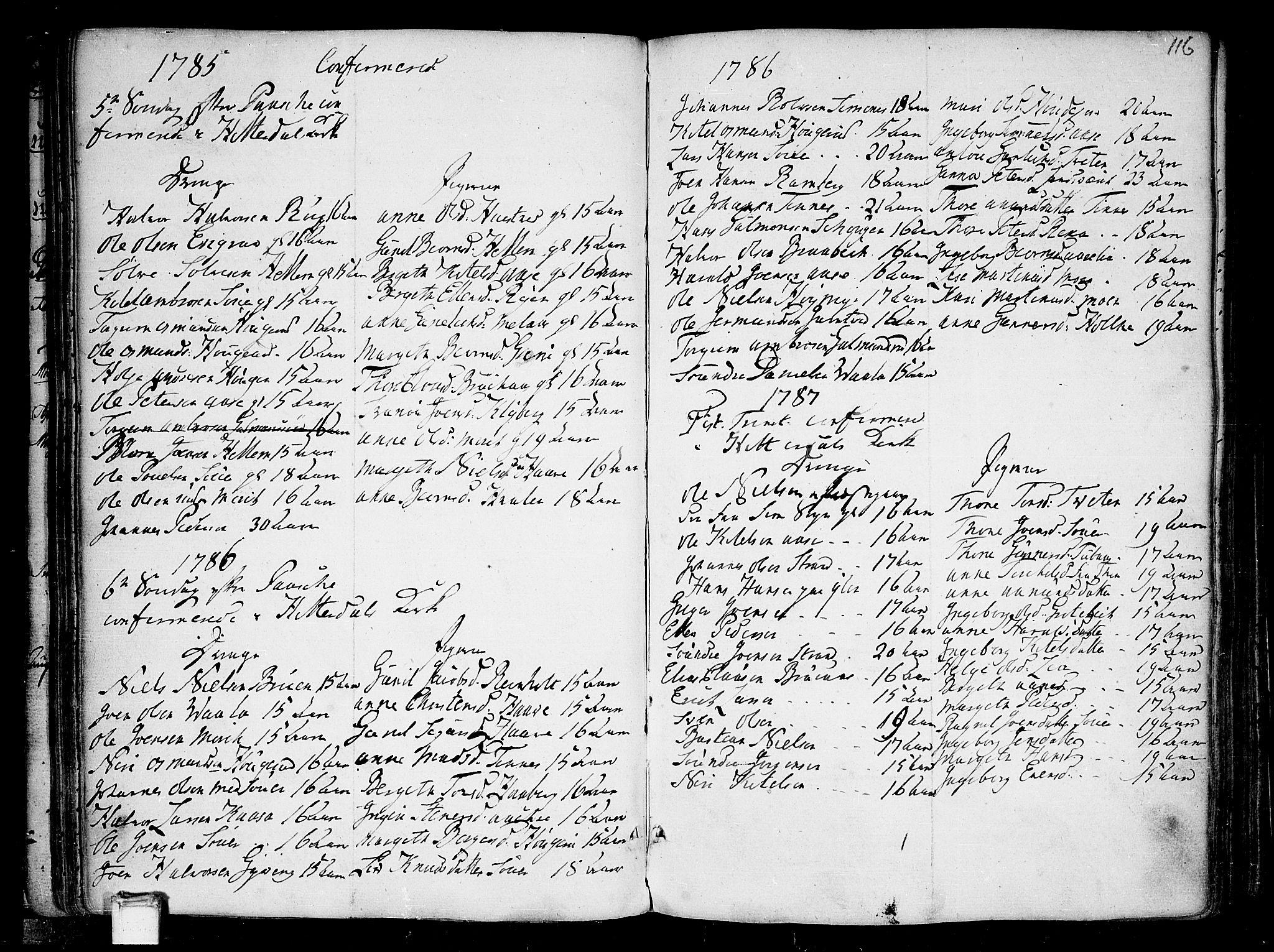 SAKO, Heddal kirkebøker, F/Fa/L0004: Ministerialbok nr. I 4, 1784-1814, s. 116