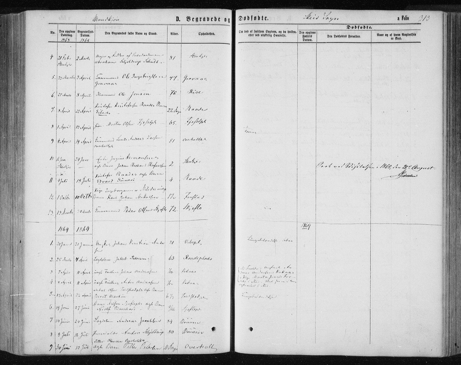 SAT, Ministerialprotokoller, klokkerbøker og fødselsregistre - Nord-Trøndelag, 735/L0345: Ministerialbok nr. 735A08 /2, 1863-1872, s. 313