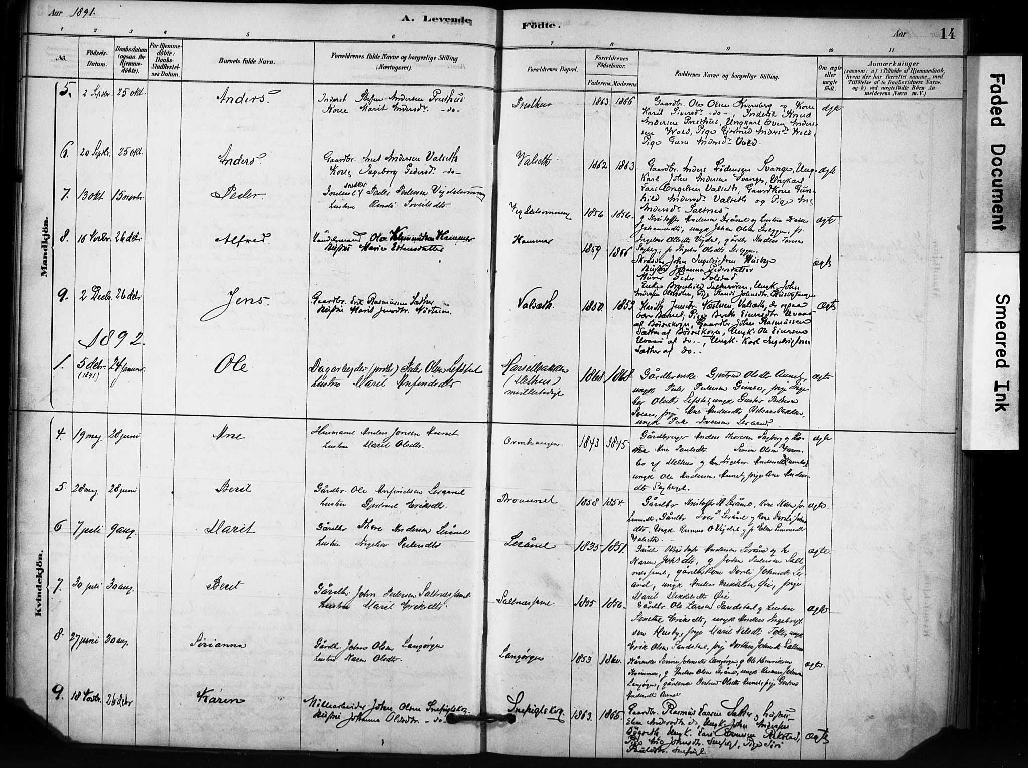 SAT, Ministerialprotokoller, klokkerbøker og fødselsregistre - Sør-Trøndelag, 666/L0786: Ministerialbok nr. 666A04, 1878-1895, s. 14