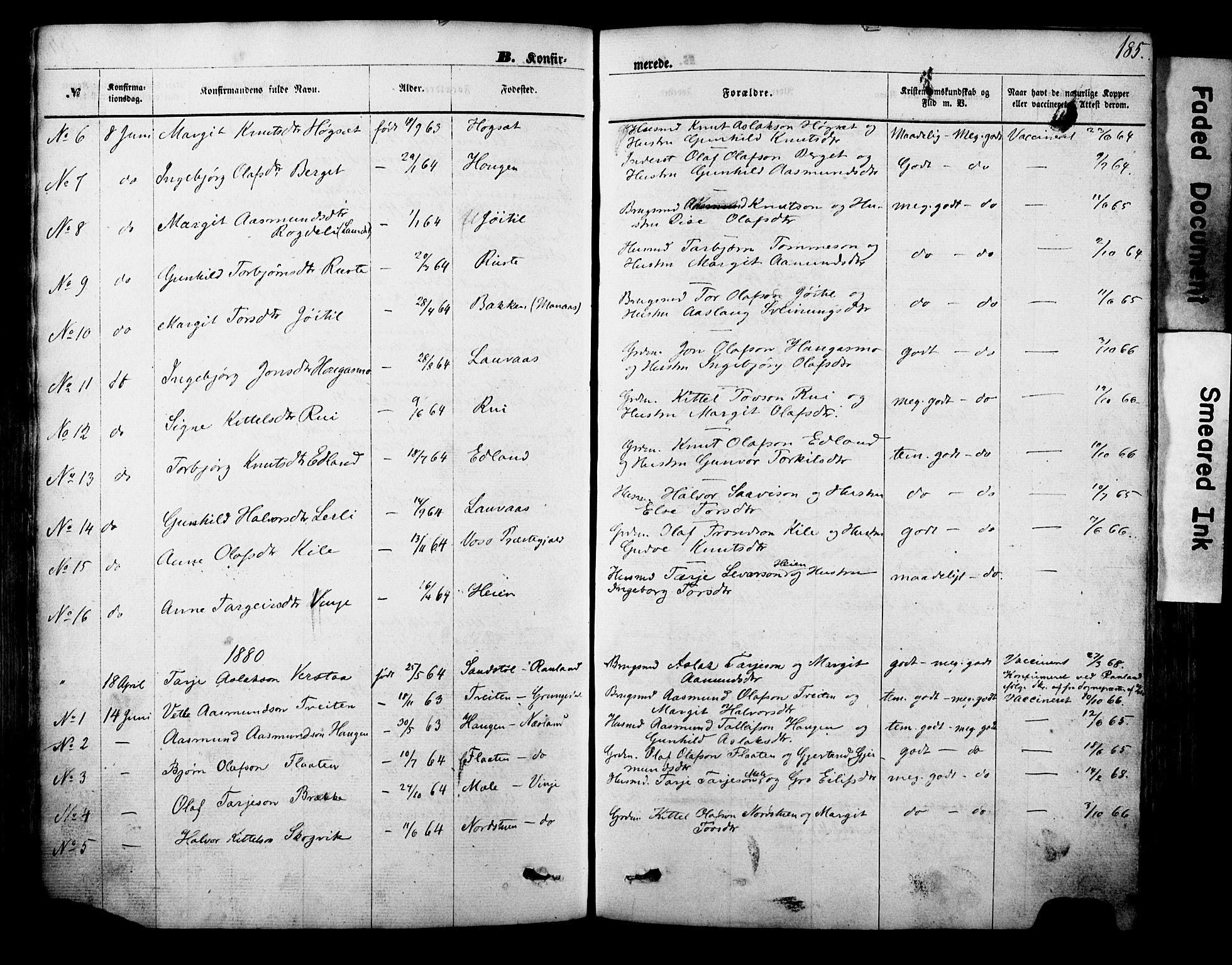 SAKO, Vinje kirkebøker, F/Fa/L0005: Ministerialbok nr. I 5, 1870-1886, s. 185
