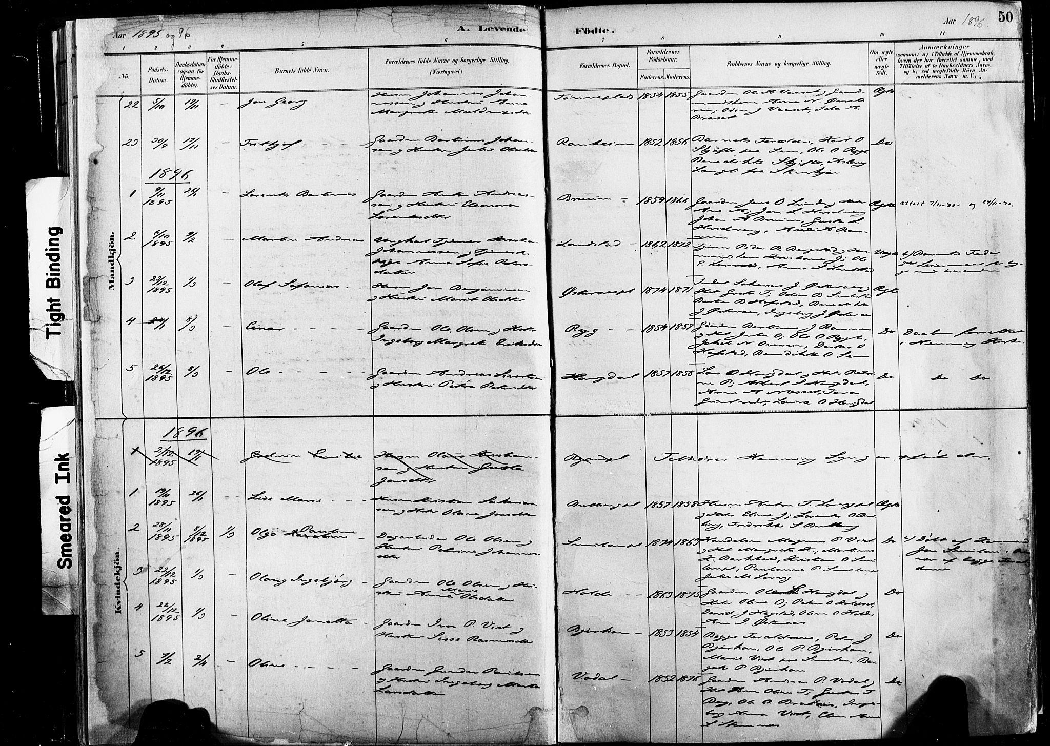 SAT, Ministerialprotokoller, klokkerbøker og fødselsregistre - Nord-Trøndelag, 735/L0351: Ministerialbok nr. 735A10, 1884-1908, s. 50