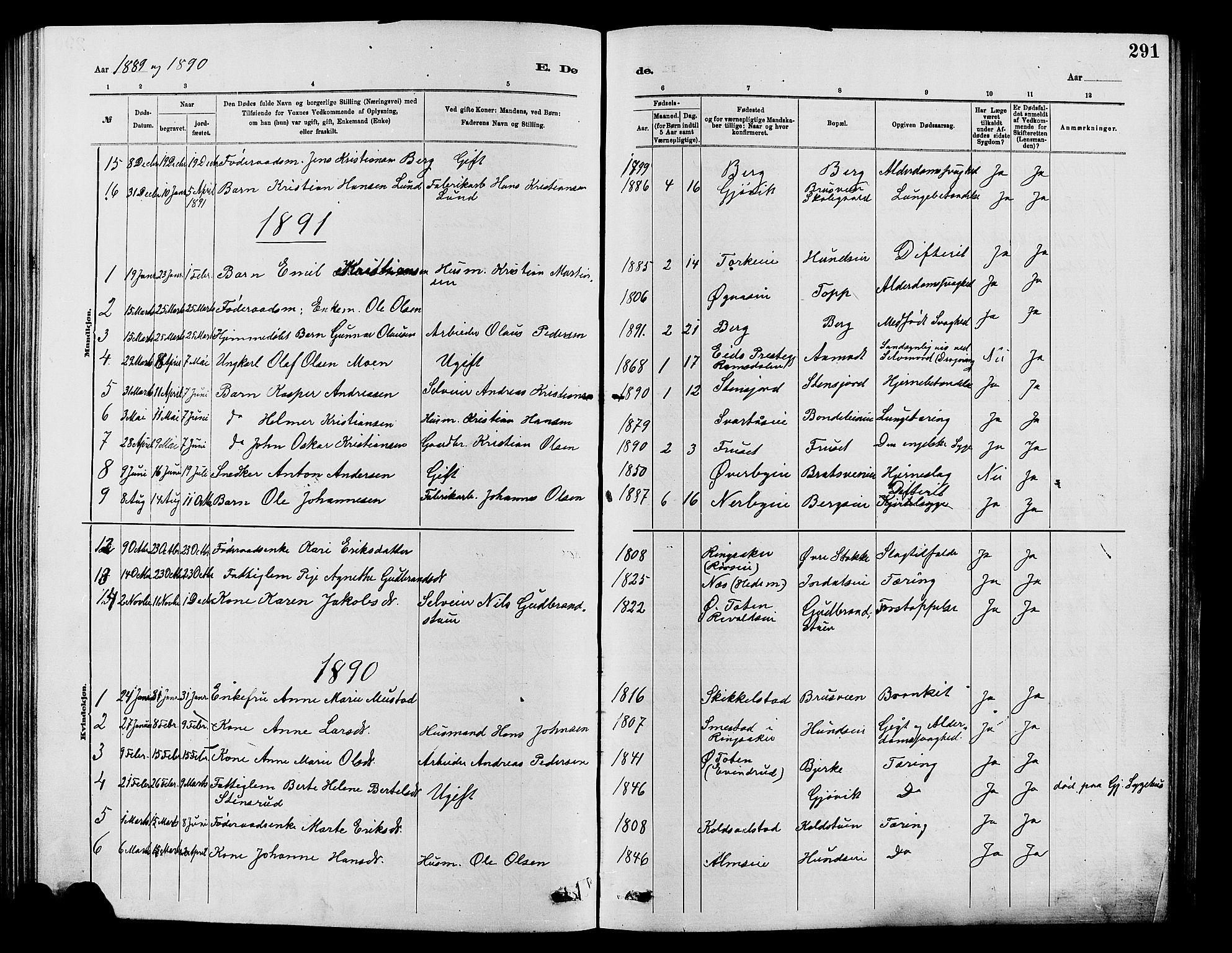 SAH, Vardal prestekontor, H/Ha/Hab/L0007: Klokkerbok nr. 7 /1, 1881-1895, s. 291