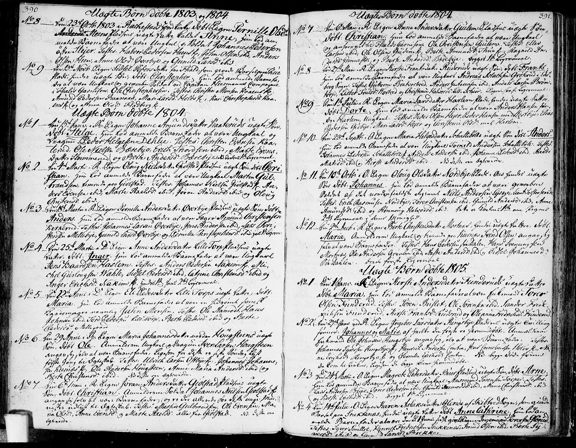 SAO, Rakkestad prestekontor Kirkebøker, F/Fa/L0005: Ministerialbok nr. I 5, 1784-1814, s. 390-391