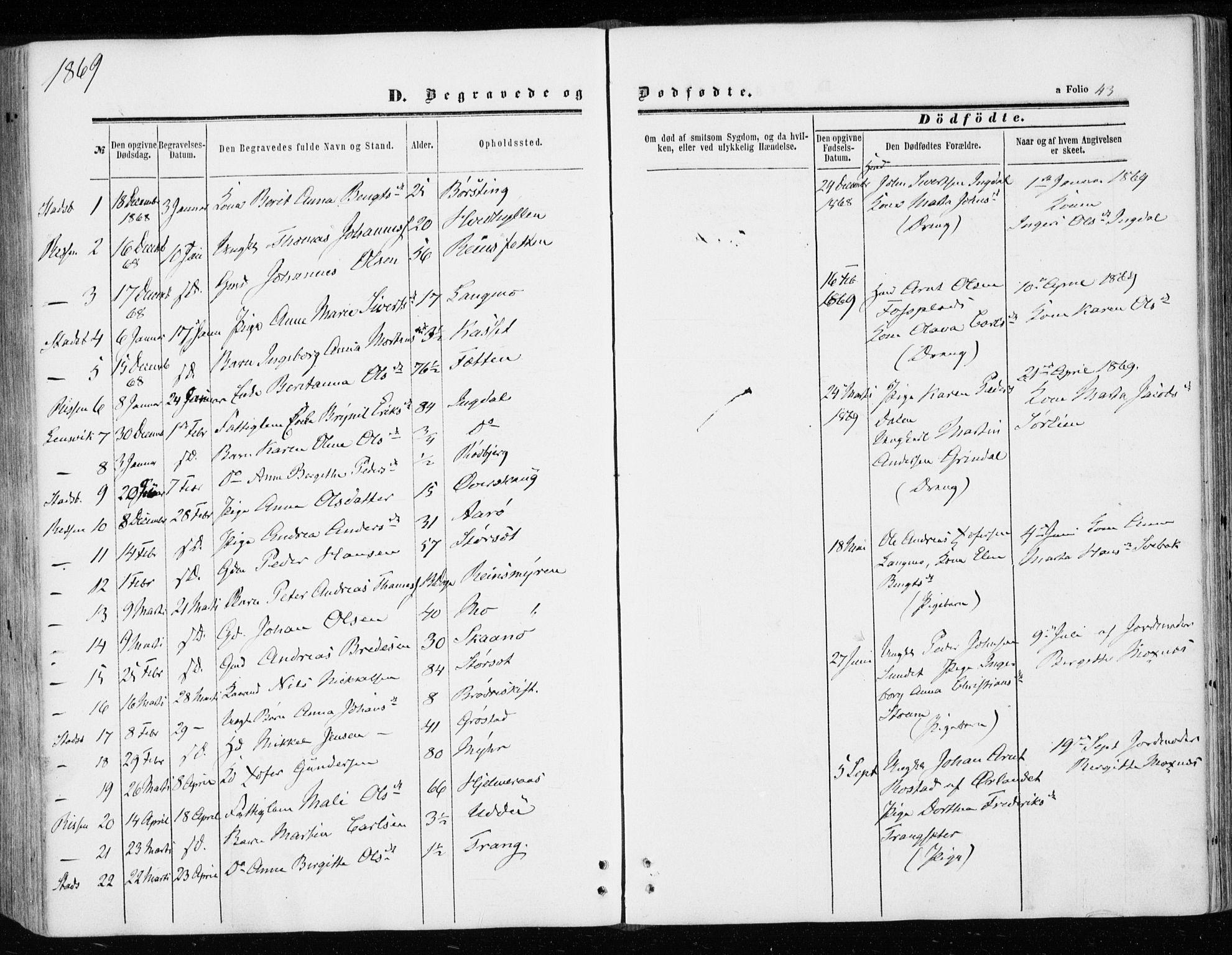 SAT, Ministerialprotokoller, klokkerbøker og fødselsregistre - Sør-Trøndelag, 646/L0612: Ministerialbok nr. 646A10, 1858-1869, s. 43