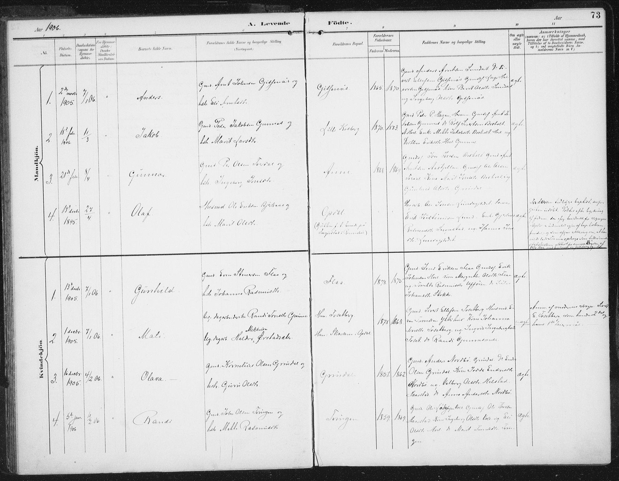 SAT, Ministerialprotokoller, klokkerbøker og fødselsregistre - Sør-Trøndelag, 674/L0872: Ministerialbok nr. 674A04, 1897-1907, s. 73