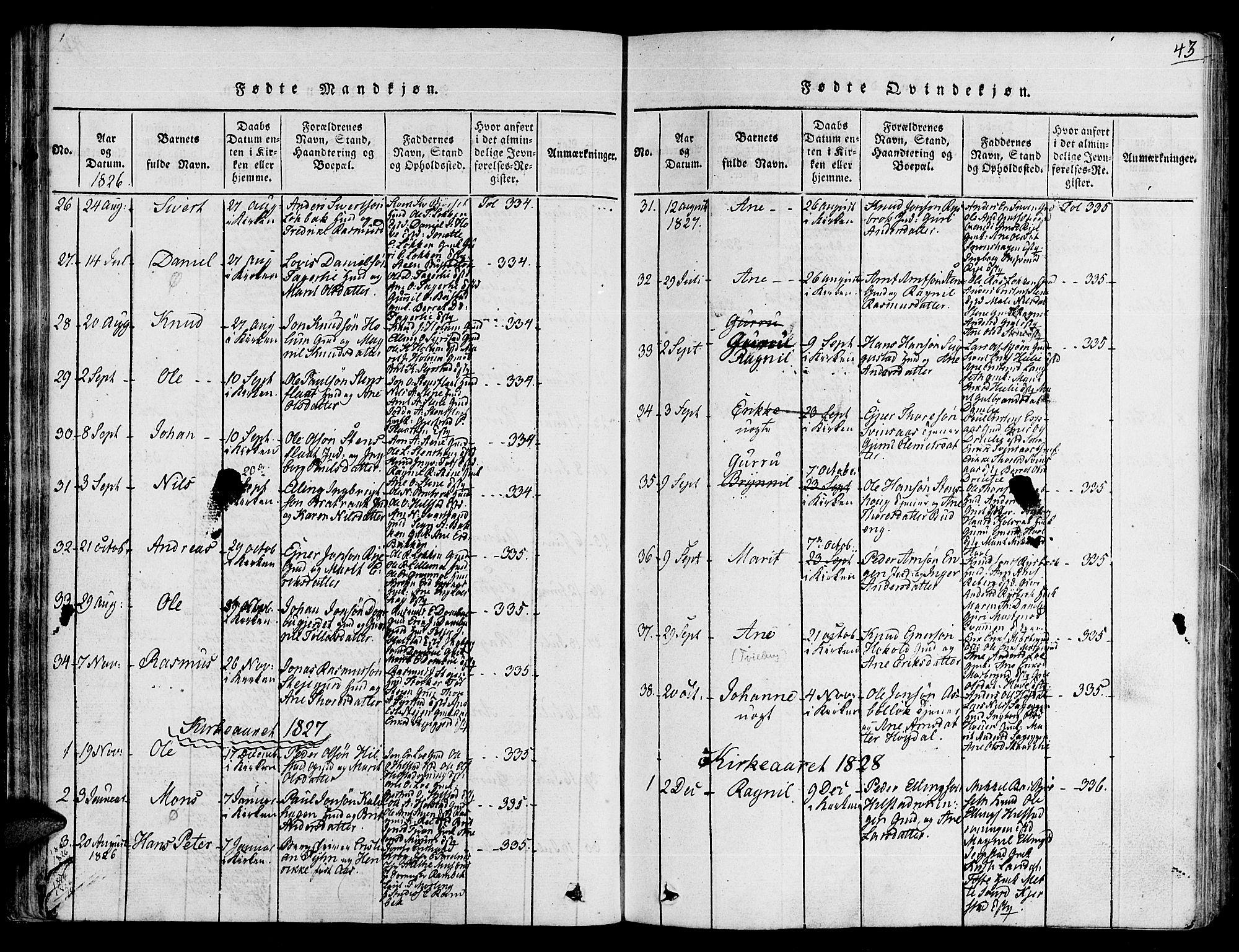 SAT, Ministerialprotokoller, klokkerbøker og fødselsregistre - Sør-Trøndelag, 672/L0853: Ministerialbok nr. 672A06 /1, 1816-1829, s. 43