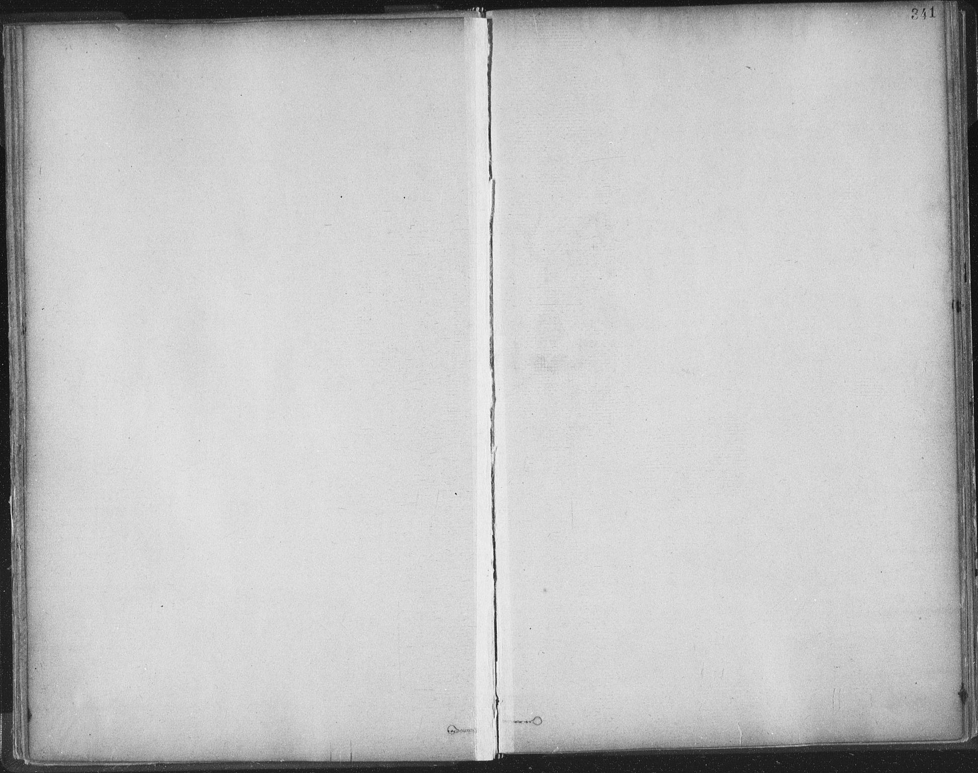 SAT, Ministerialprotokoller, klokkerbøker og fødselsregistre - Sør-Trøndelag, 603/L0163: Ministerialbok nr. 603A02, 1879-1895, s. 341