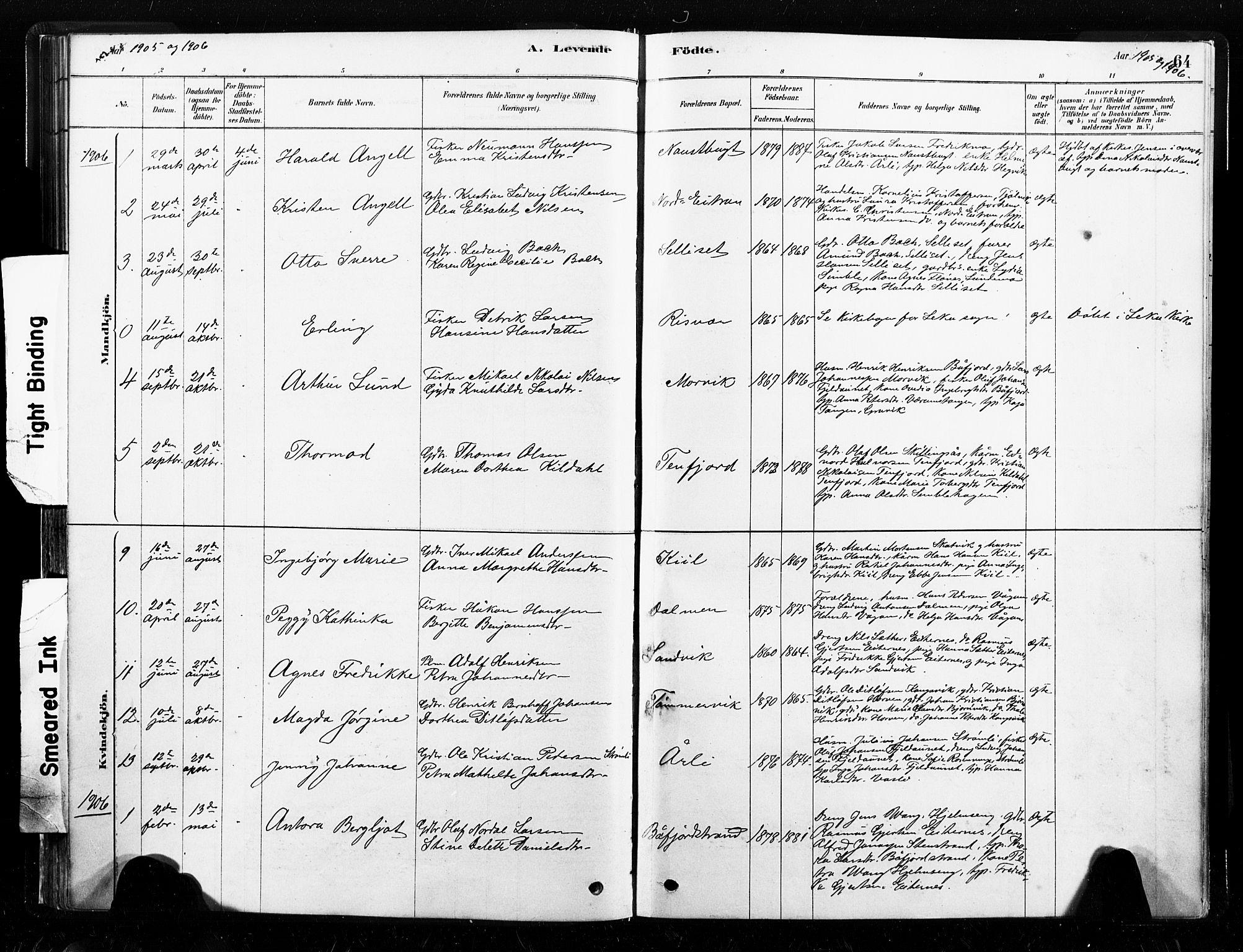 SAT, Ministerialprotokoller, klokkerbøker og fødselsregistre - Nord-Trøndelag, 789/L0705: Ministerialbok nr. 789A01, 1878-1910, s. 64