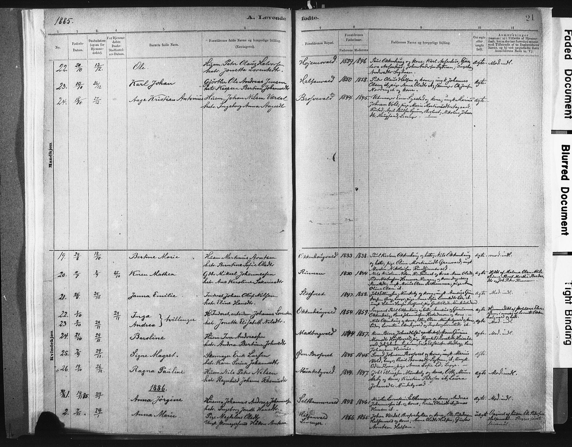 SAT, Ministerialprotokoller, klokkerbøker og fødselsregistre - Nord-Trøndelag, 721/L0207: Ministerialbok nr. 721A02, 1880-1911, s. 21