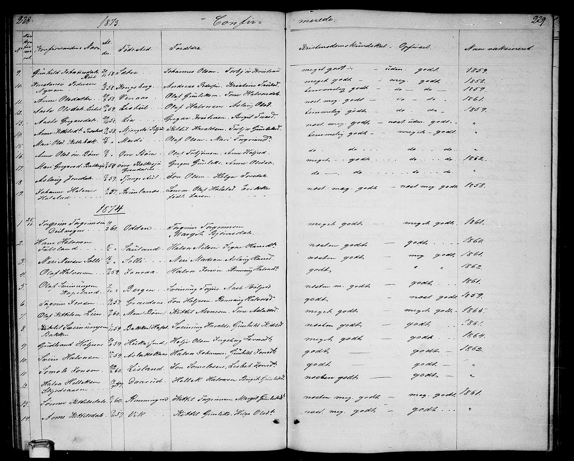SAKO, Gransherad kirkebøker, G/Ga/L0002: Klokkerbok nr. I 2, 1854-1886, s. 228-229