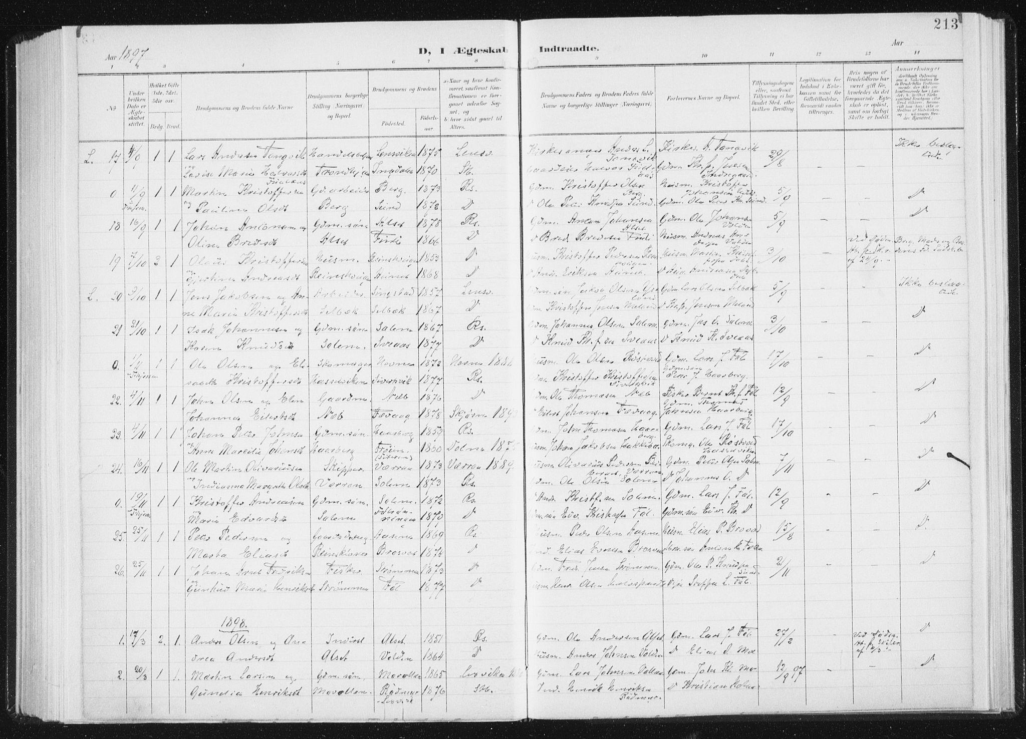 SAT, Ministerialprotokoller, klokkerbøker og fødselsregistre - Sør-Trøndelag, 647/L0635: Ministerialbok nr. 647A02, 1896-1911, s. 213